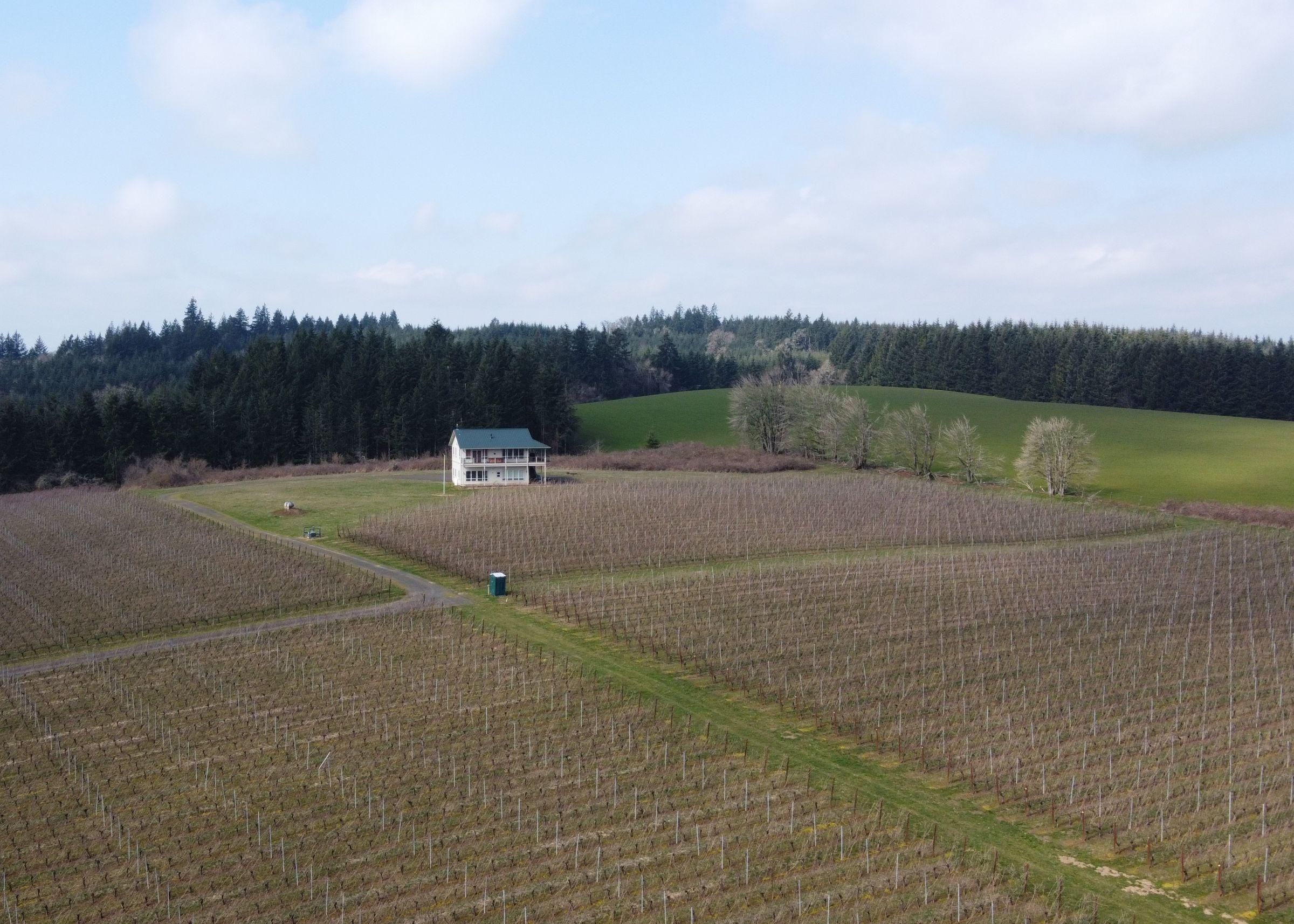 residential-land-polk-county-oregon-65-acres-listing-number-15179-4-2021-03-10-153754.JPG