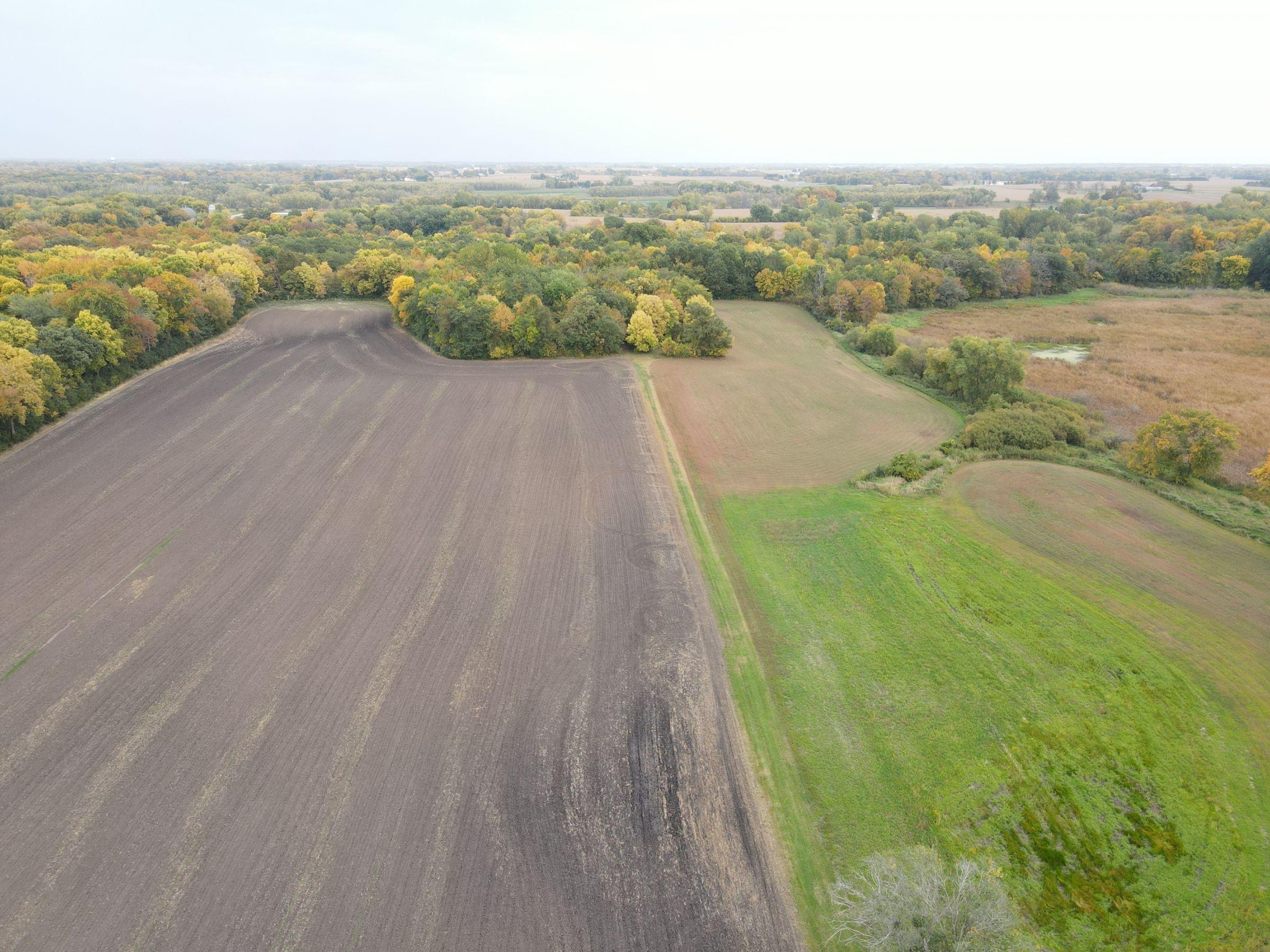 residential-land-mcleod-county-minnesota-80-acres-listing-number-15182-0-2020-10-07-142937.JPG