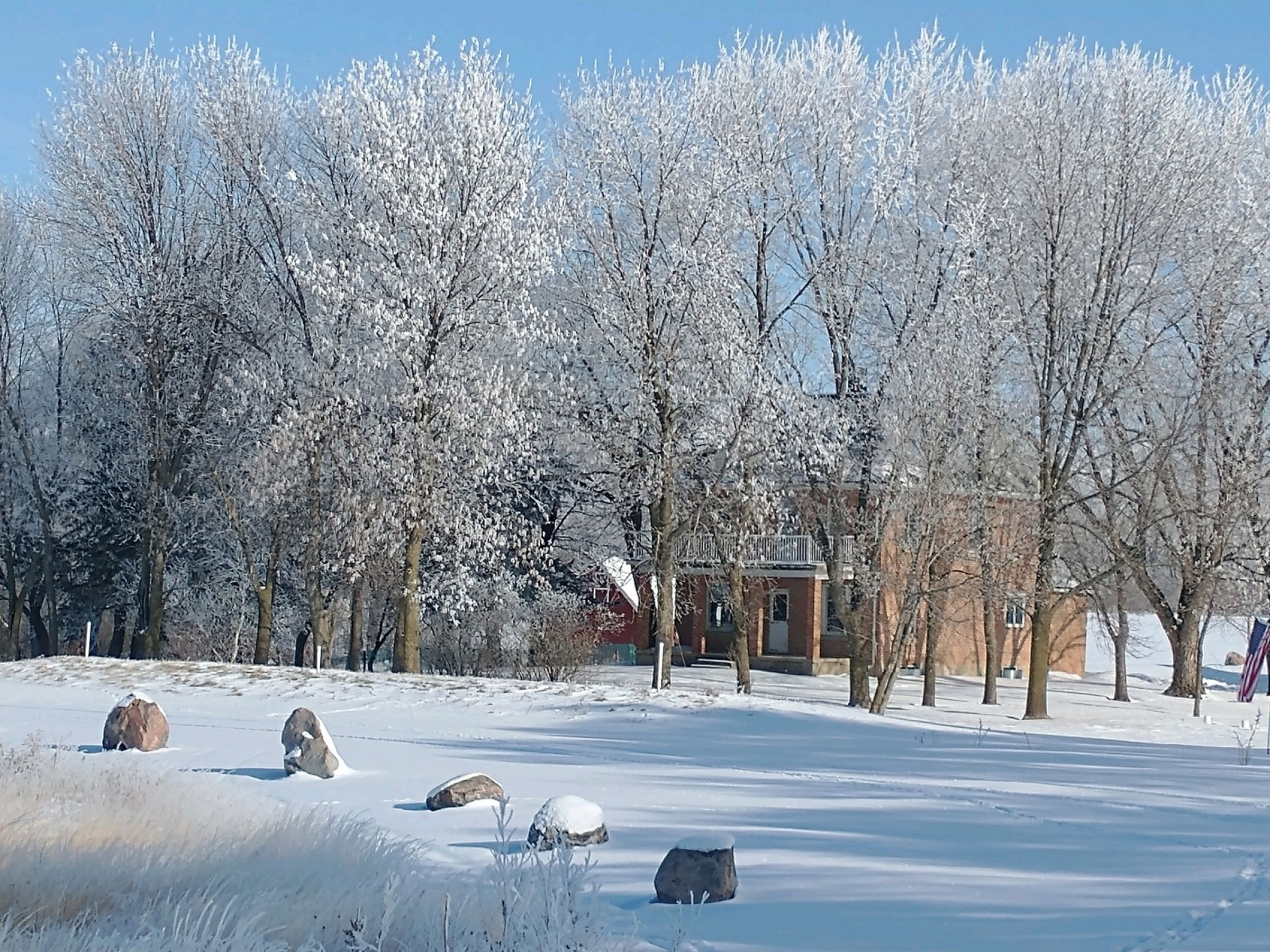residential-land-mcleod-county-minnesota-80-acres-listing-number-15182-0-2021-01-21-152648.jpeg