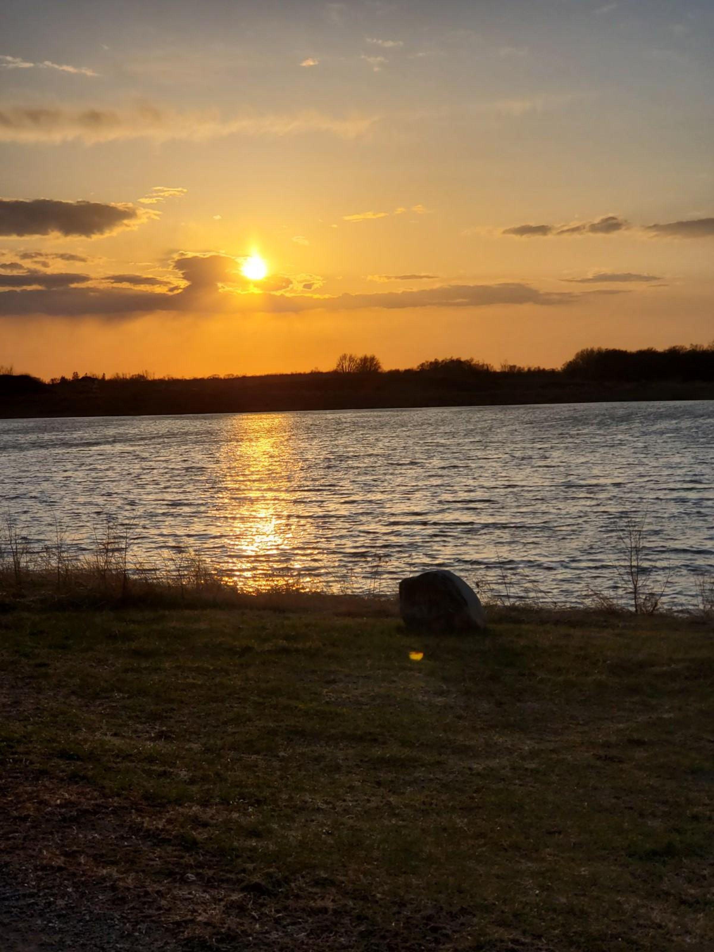 residential-land-mcleod-county-minnesota-80-acres-listing-number-15182-14-2020-09-23-163834.jpeg