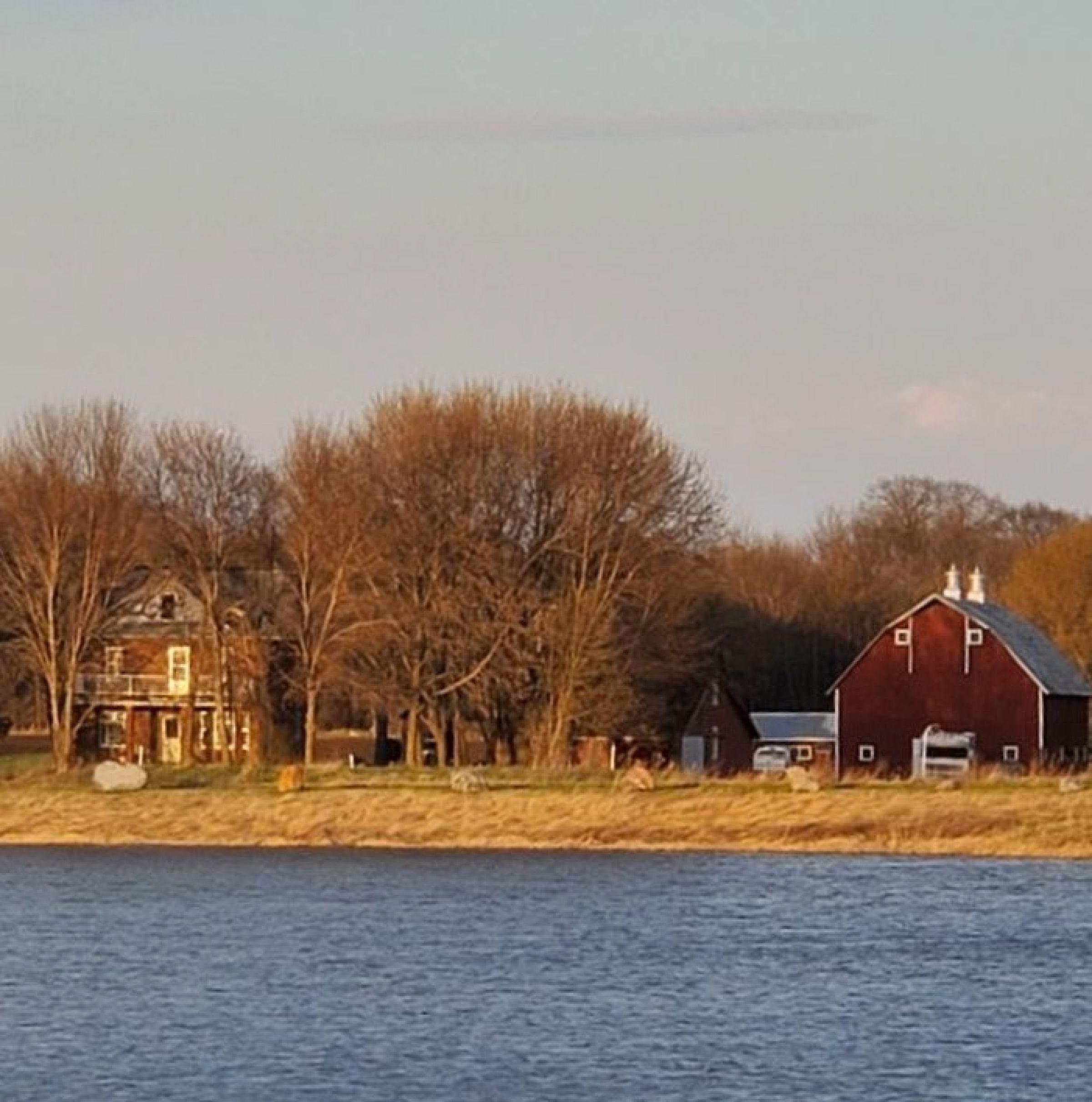 residential-land-mcleod-county-minnesota-80-acres-listing-number-15182-6-2020-09-23-163826.jpeg