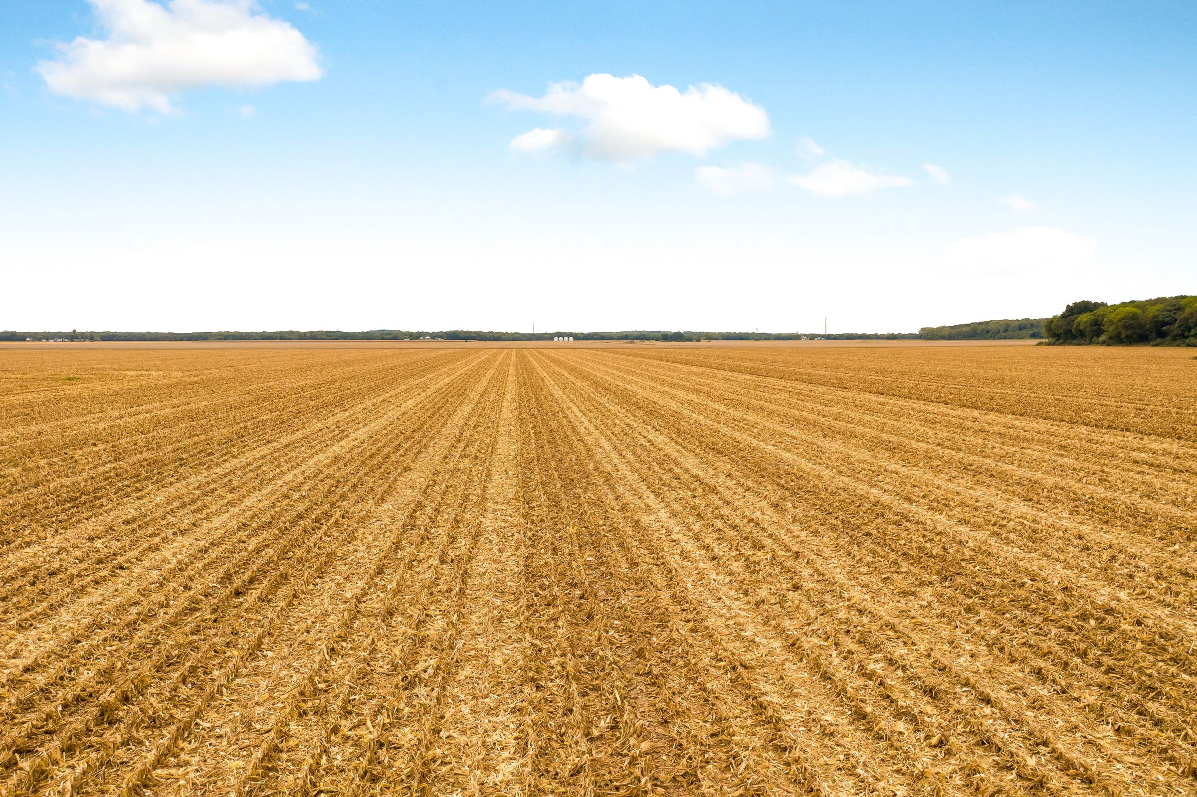 auctions-saline-county-illinois-1145-acres-listing-number-15186-0-2020-10-01-040040.jpeg