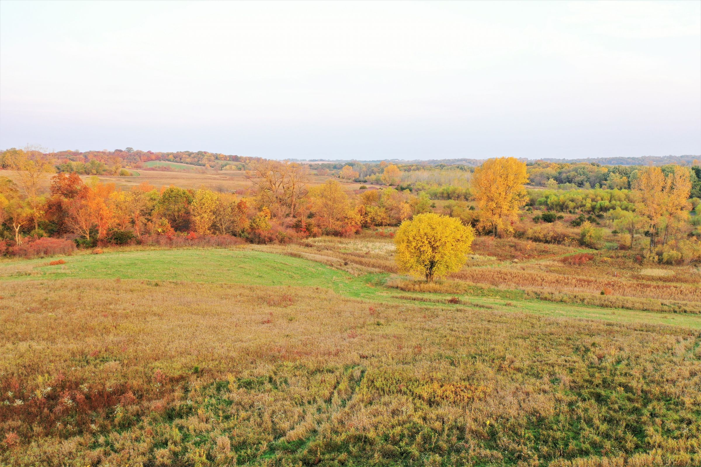 development-land-madison-county-iowa-149-acres-listing-number-15199-0-2020-10-09-132959.jpg