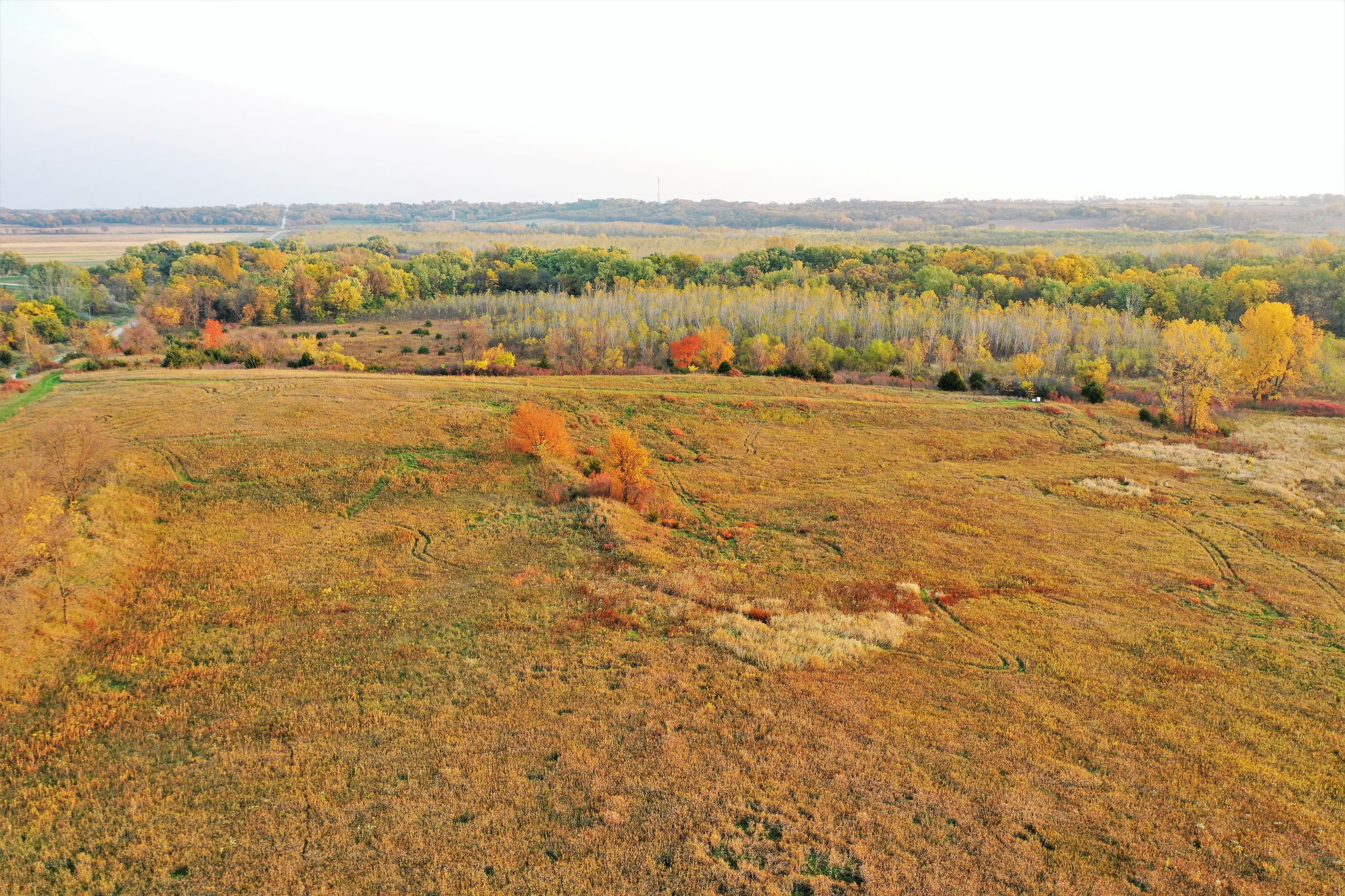 development-land-madison-county-iowa-149-acres-listing-number-15199-3-2020-10-09-133050.jpg