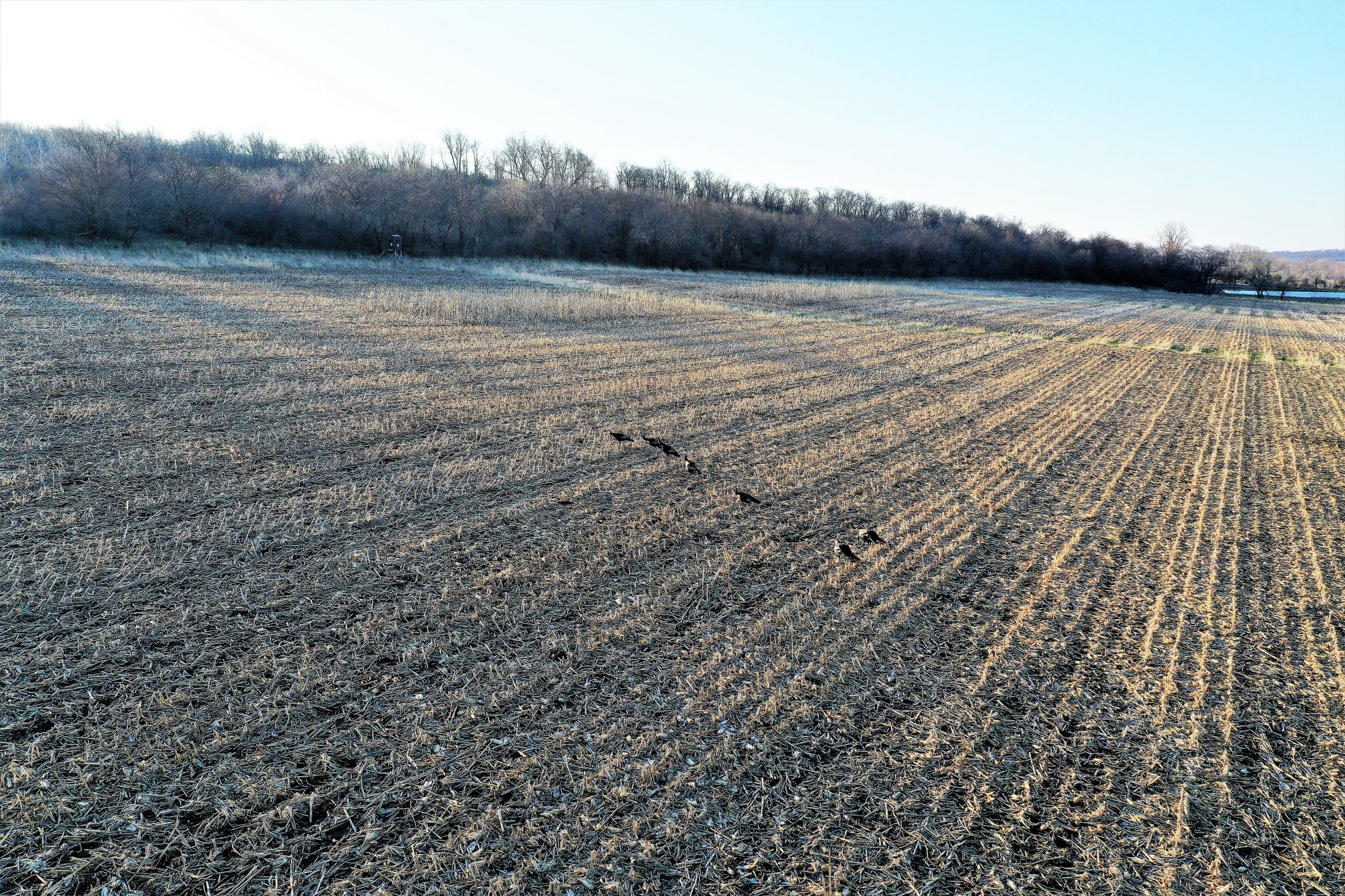 development-land-madison-county-iowa-267-acres-listing-number-15200-3-2020-10-06-184531.jpg