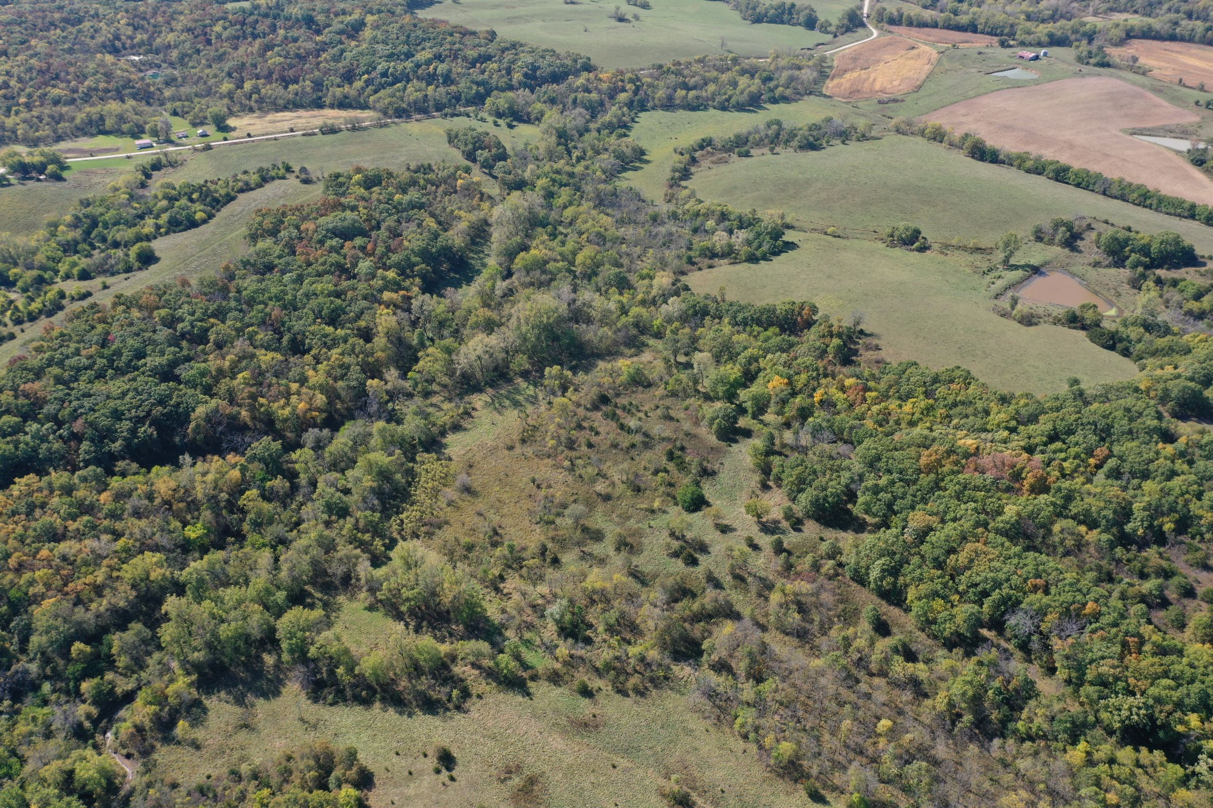 land-lucas-county-iowa-215-acres-listing-number-15206-0-2020-10-09-161112.jpg