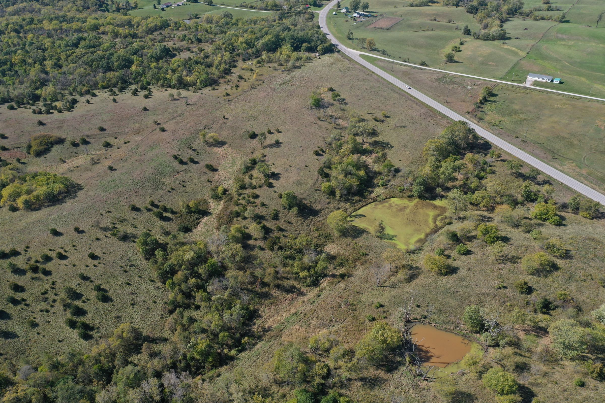 land-lucas-county-iowa-215-acres-listing-number-15206-0-2020-10-09-161604.jpg