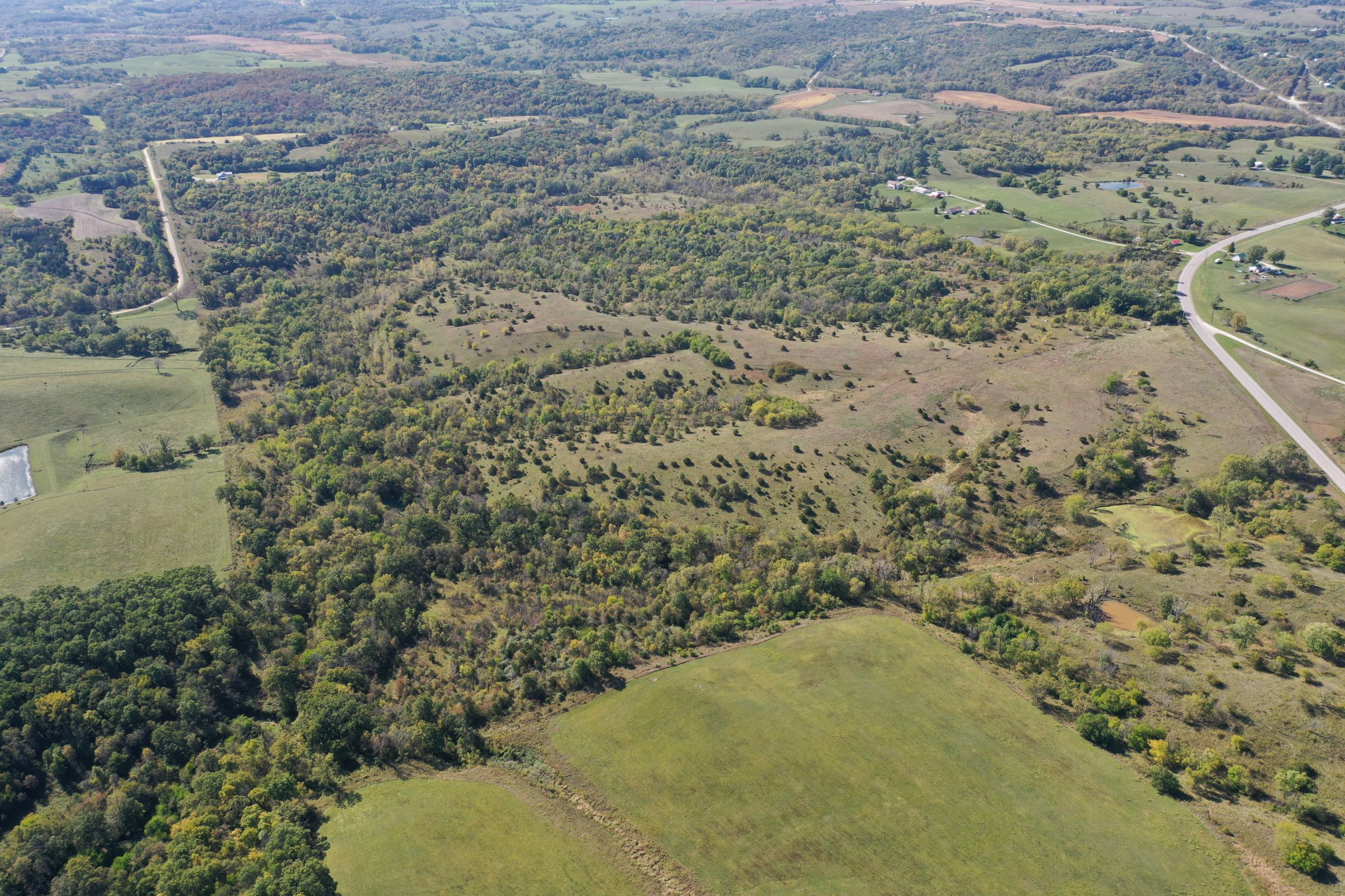 land-lucas-county-iowa-215-acres-listing-number-15206-1-2020-10-09-161606.jpg