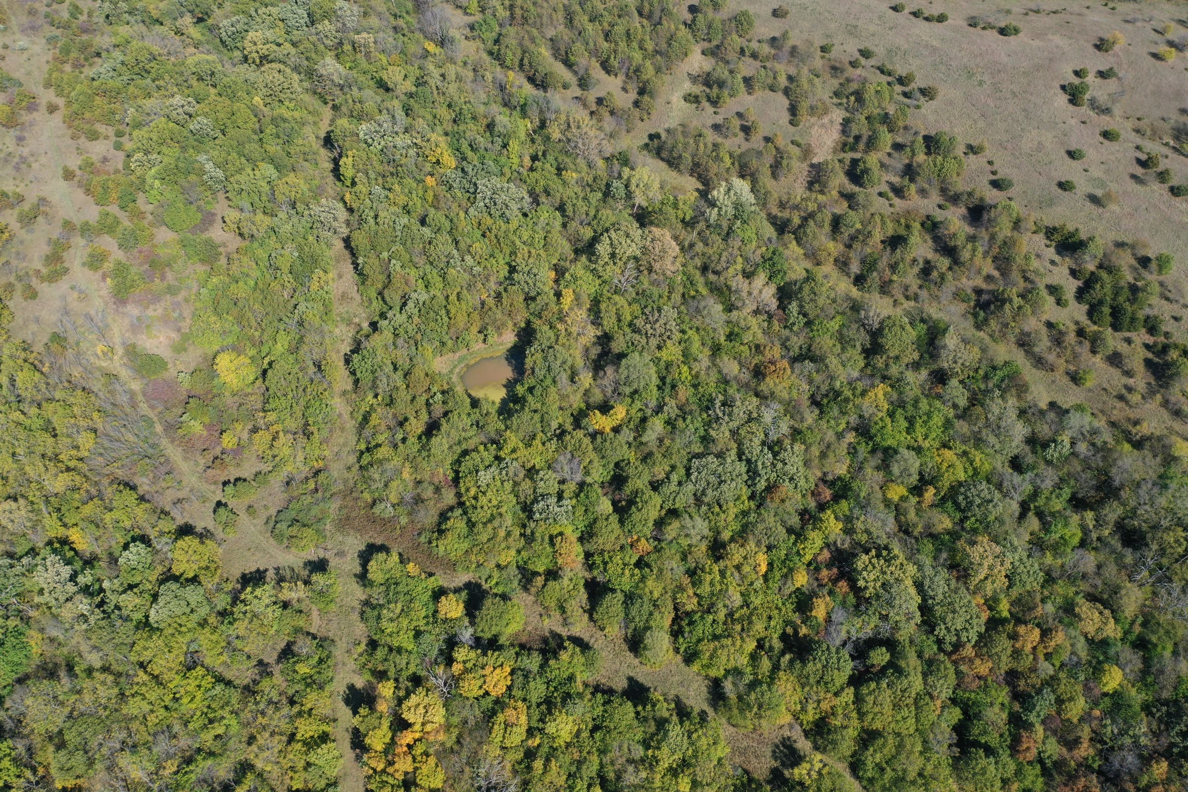 land-lucas-county-iowa-215-acres-listing-number-15206-1-2020-10-09-163811.jpg