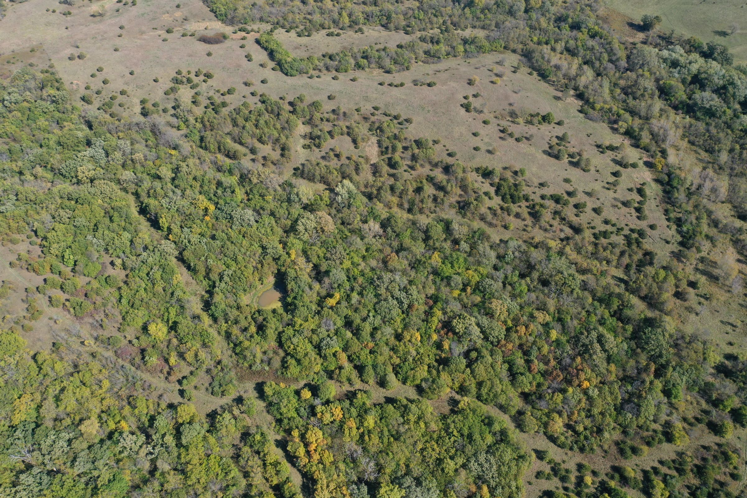 land-lucas-county-iowa-215-acres-listing-number-15206-2-2020-10-09-164352.jpg