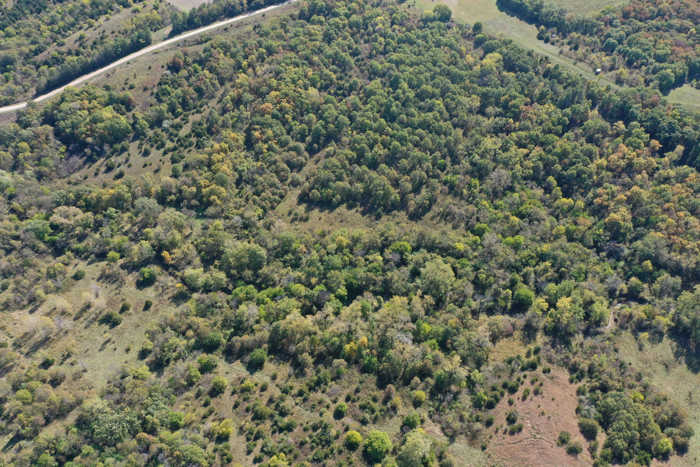 land-lucas-county-iowa-215-acres-listing-number-15206-3-2020-10-09-164353.jpg