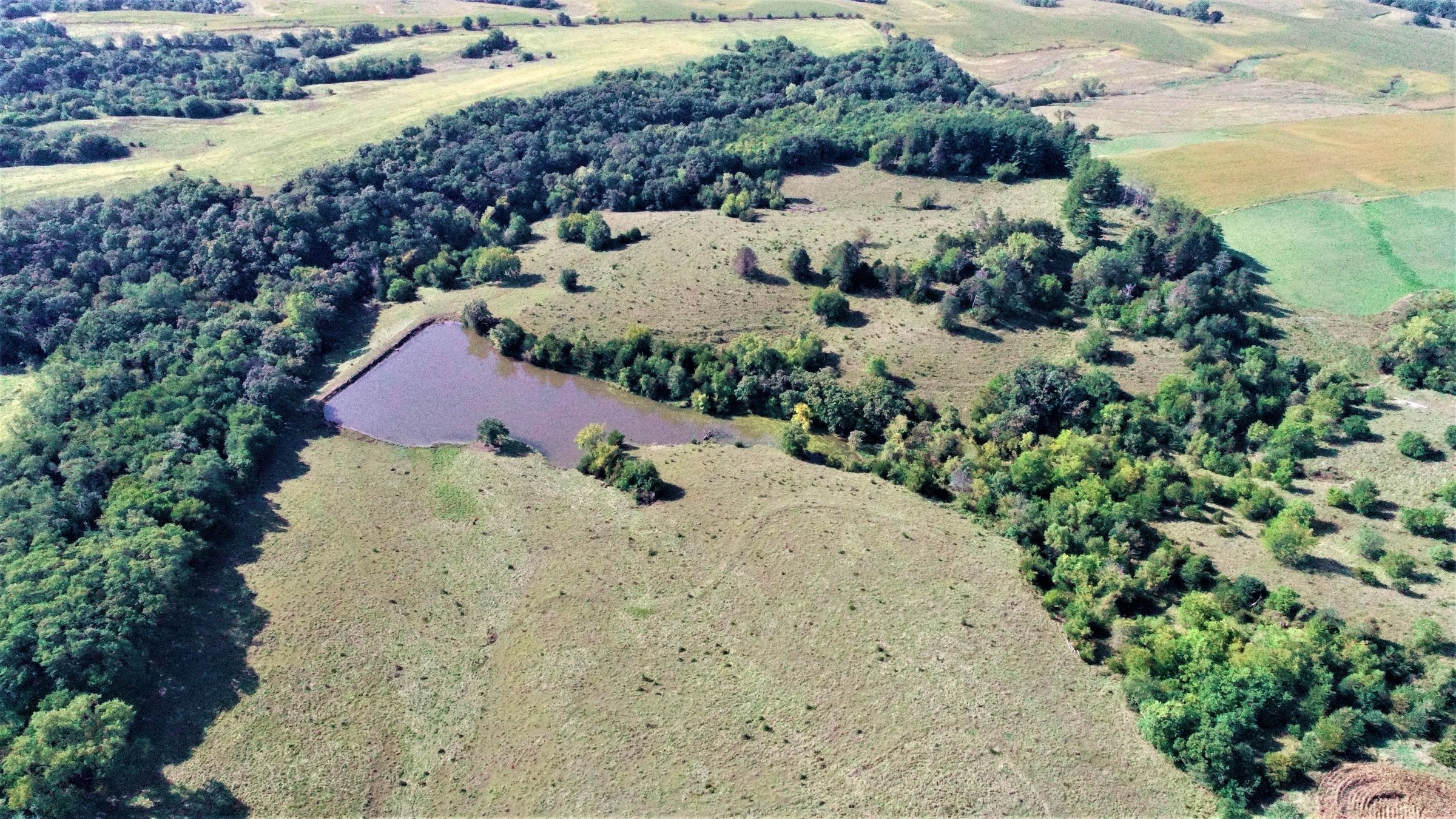 madison-county-iowa-76-acres-listing-number-15209-3-2020-10-12-175955.jpg