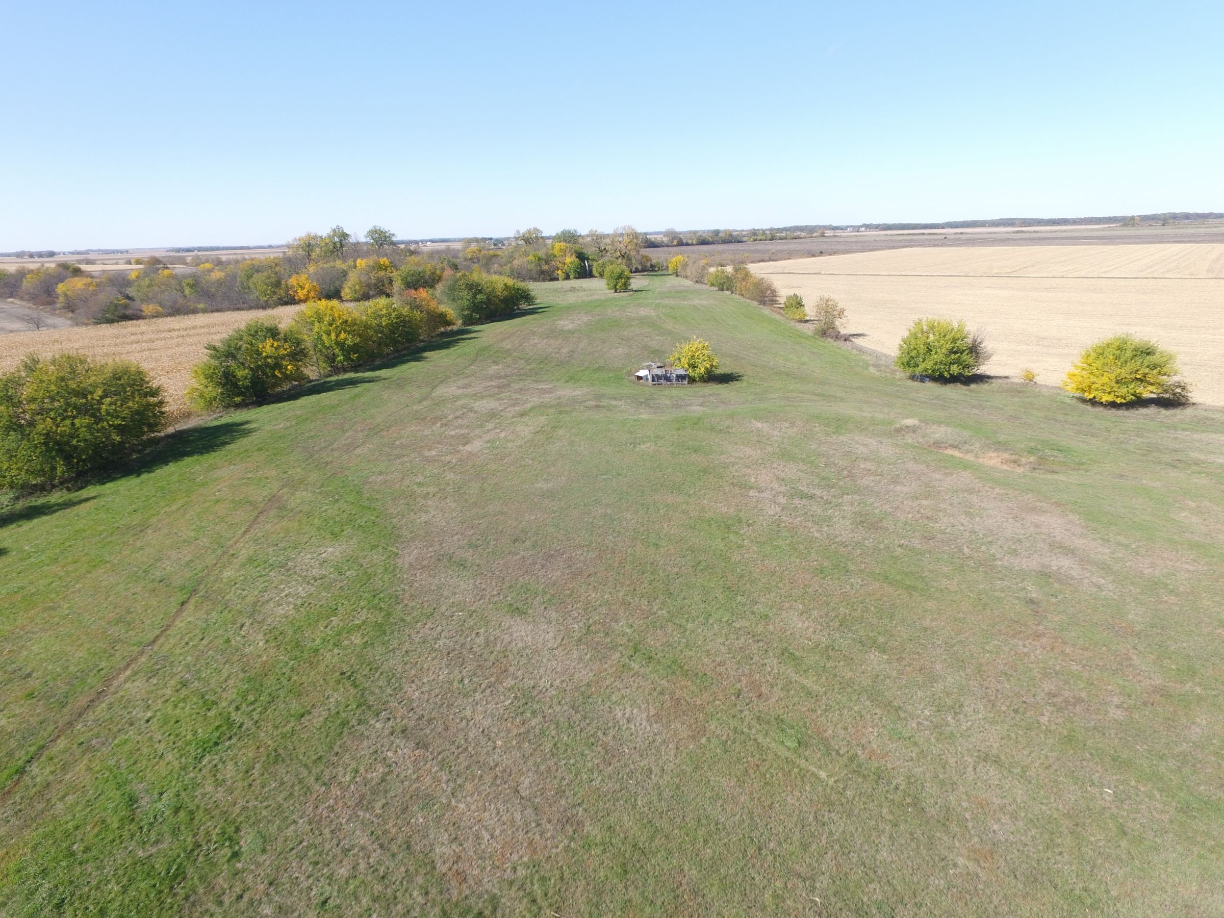 land-henry-county-illinois-240-acres-listing-number-15213-2-2020-10-22-163831.JPG