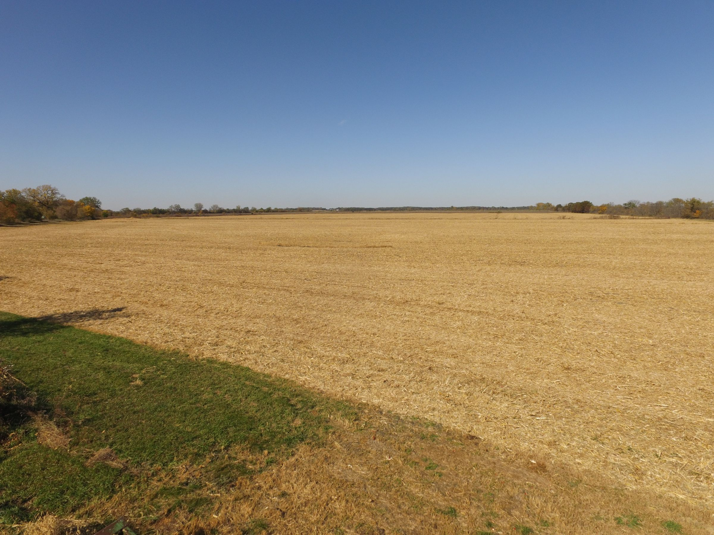 land-henry-county-illinois-240-acres-listing-number-15213-3-2020-10-22-163832.JPG