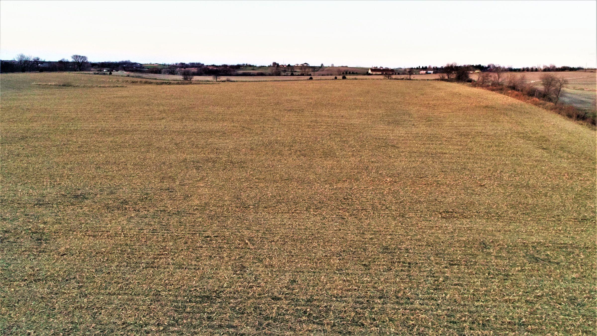 land-madison-county-iowa-20-acres-listing-number-15233-0-2020-11-10-001023.JPG