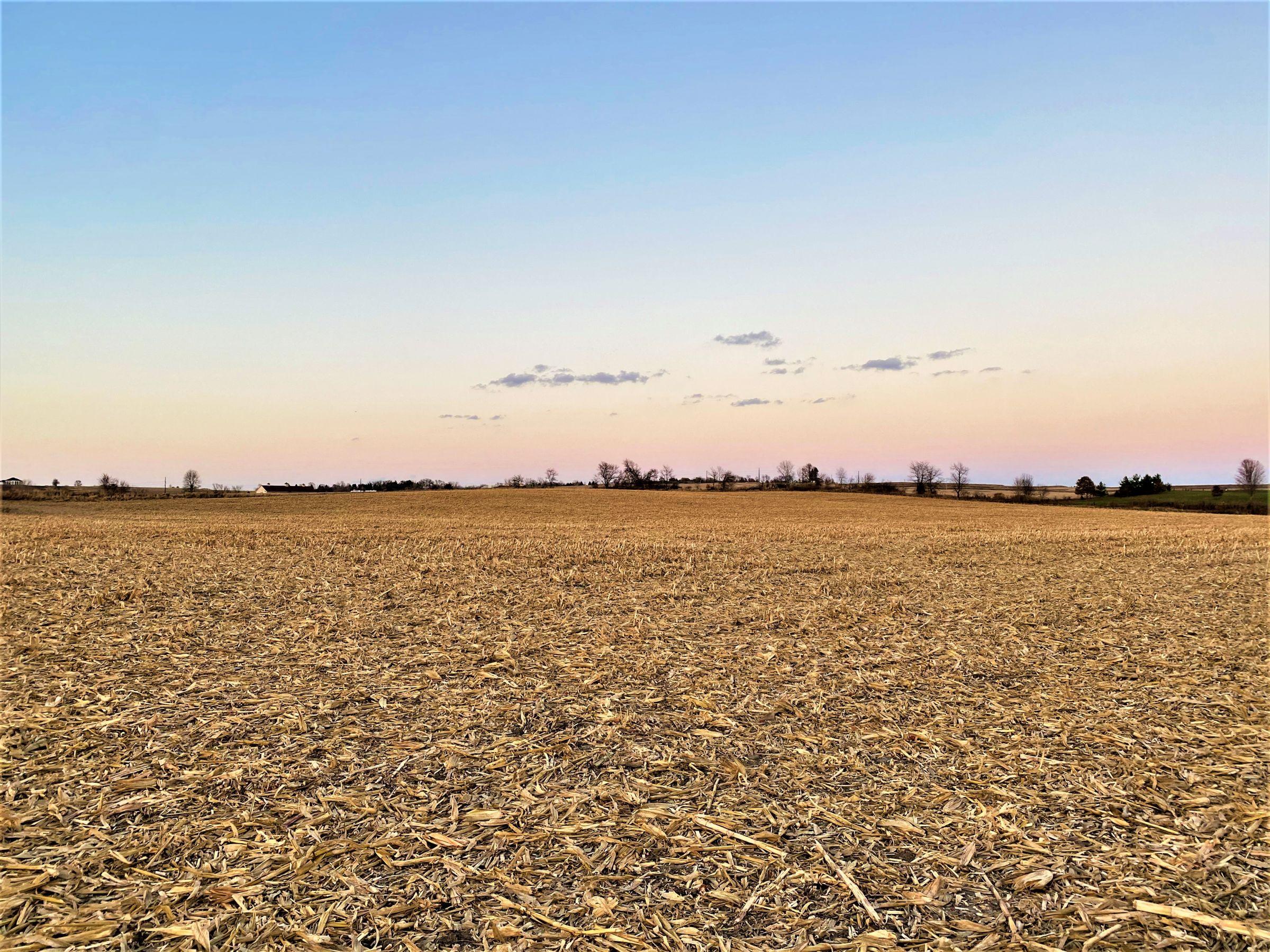 land-madison-county-iowa-20-acres-listing-number-15233-11-2020-11-10-001036.jpg