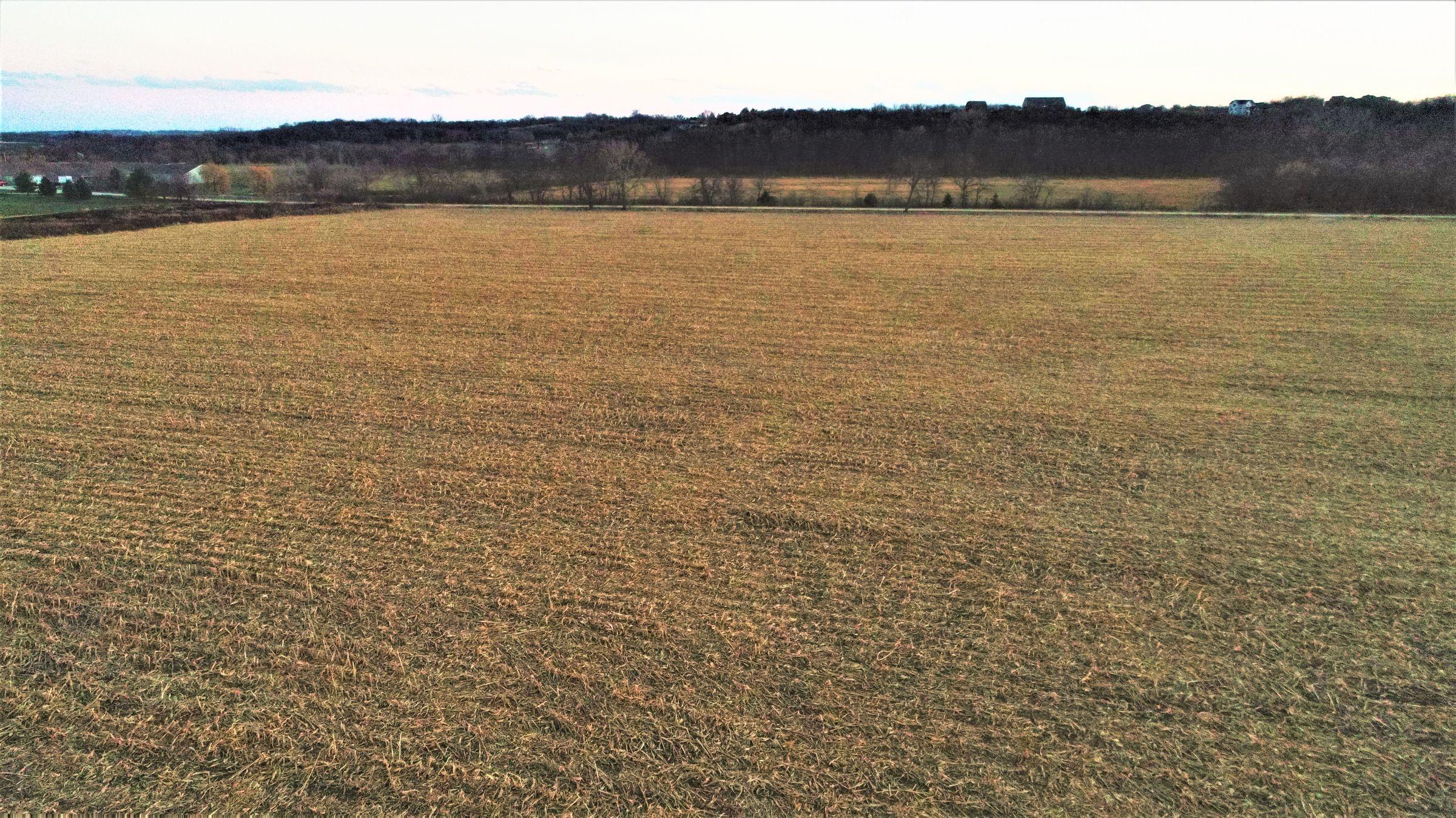 land-madison-county-iowa-20-acres-listing-number-15233-8-2020-11-10-001032.JPG