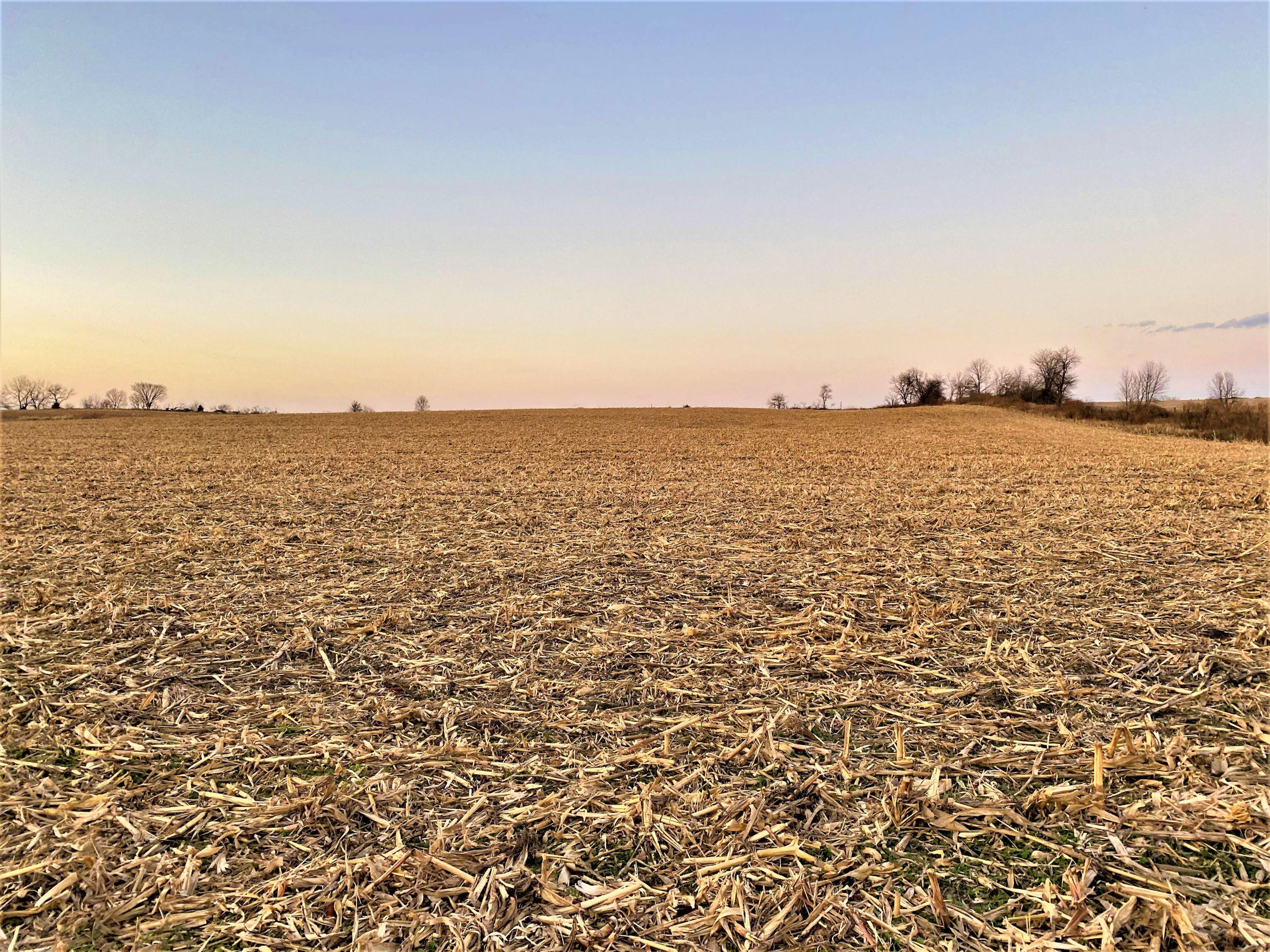 land-madison-county-iowa-20-acres-listing-number-15233-9-2020-11-10-001034.jpg