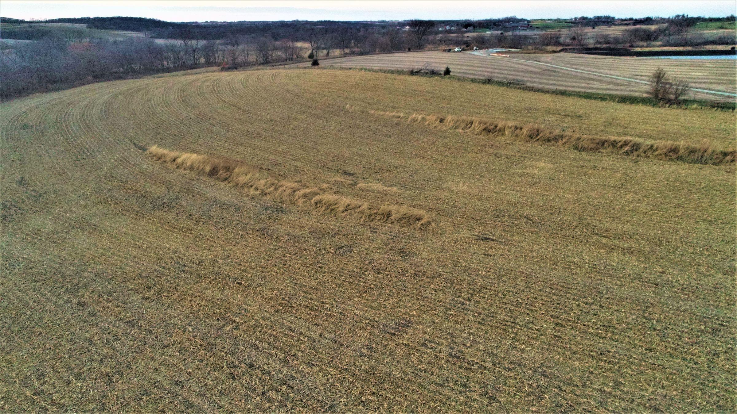 land-madison-county-iowa-20-acres-listing-number-15234-0-2020-11-10-010428.JPG