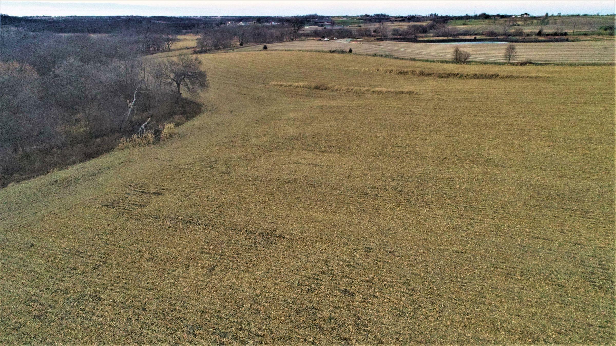 land-madison-county-iowa-20-acres-listing-number-15234-1-2020-11-10-010429.JPG