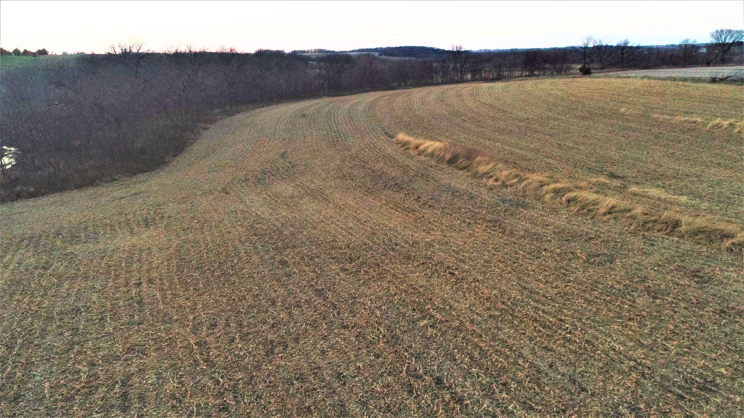 land-madison-county-iowa-20-acres-listing-number-15234-4-2020-11-10-010433.JPG