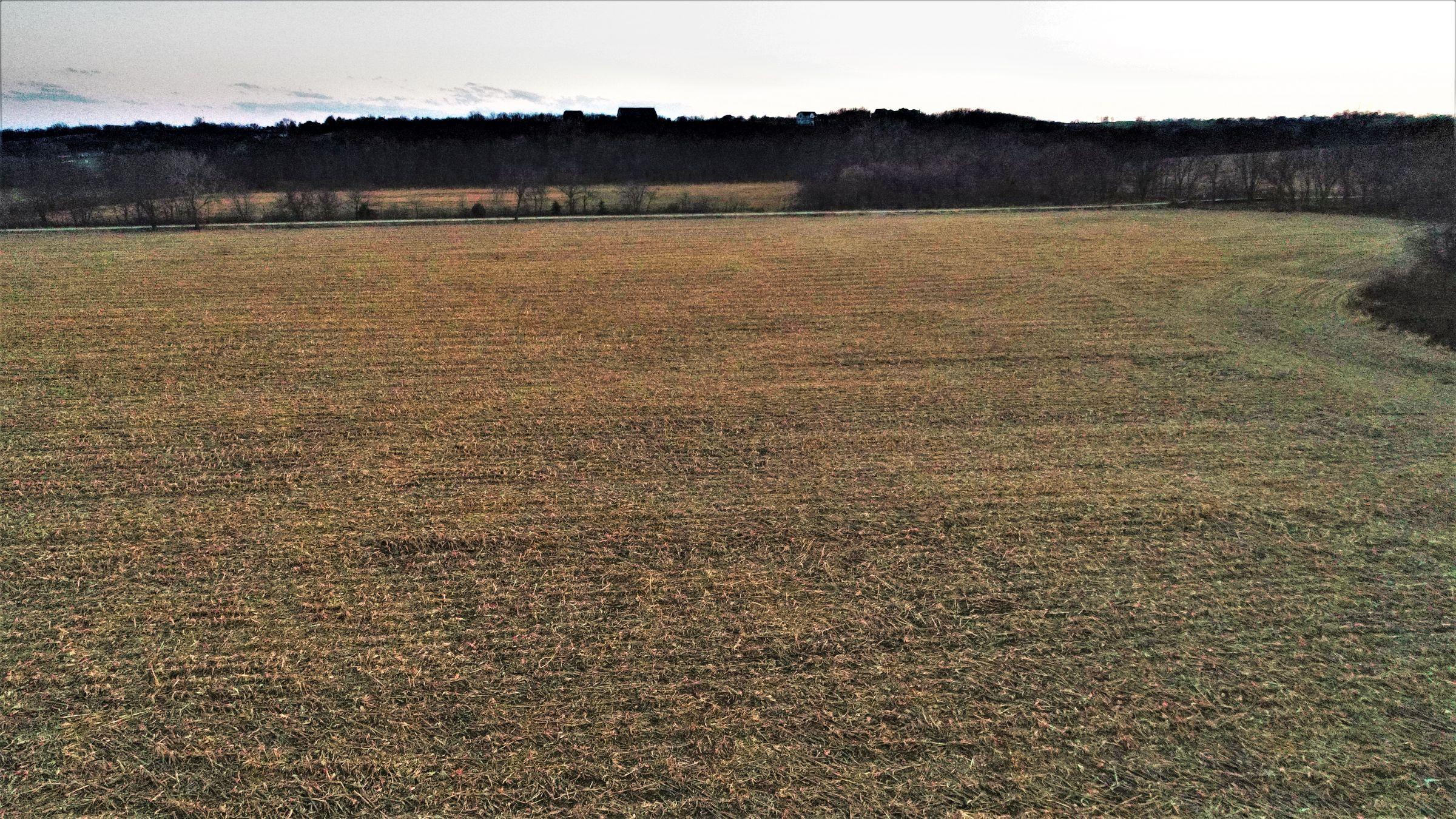 land-madison-county-iowa-20-acres-listing-number-15234-6-2020-11-10-010436.JPG