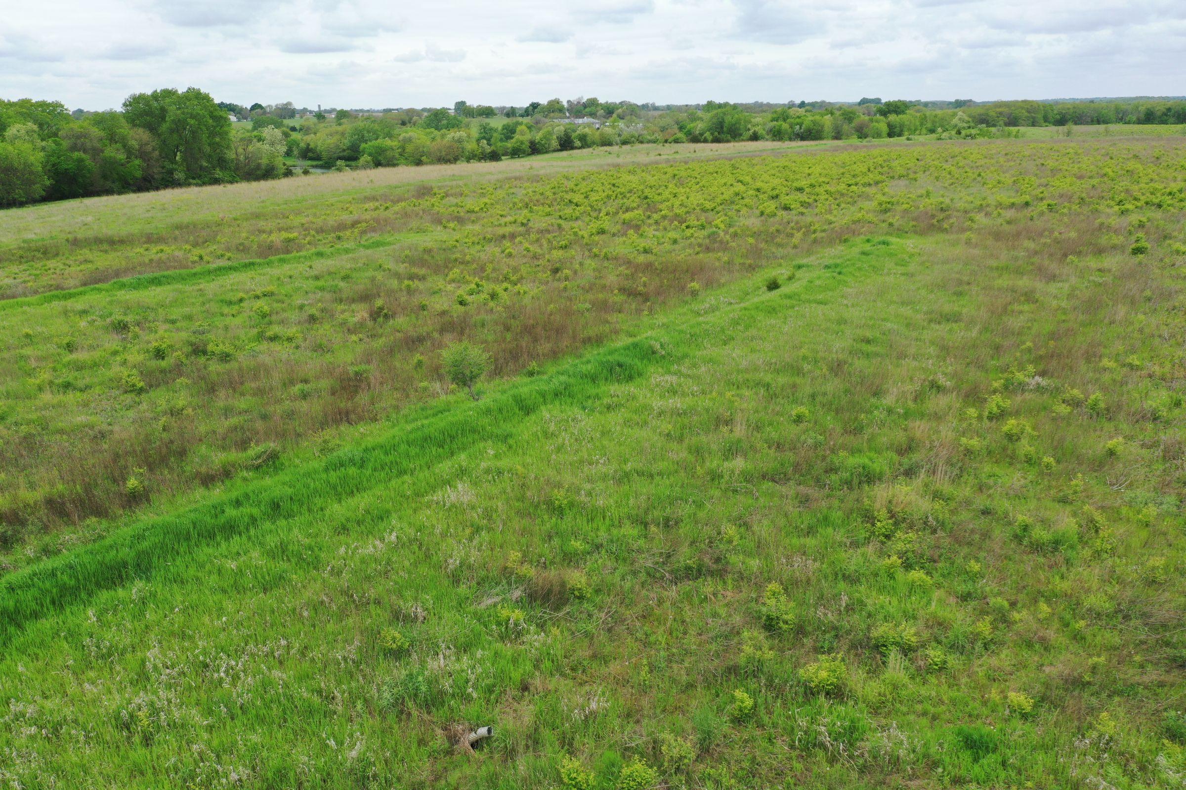 Dallas County Iowa Farm Land For Sale