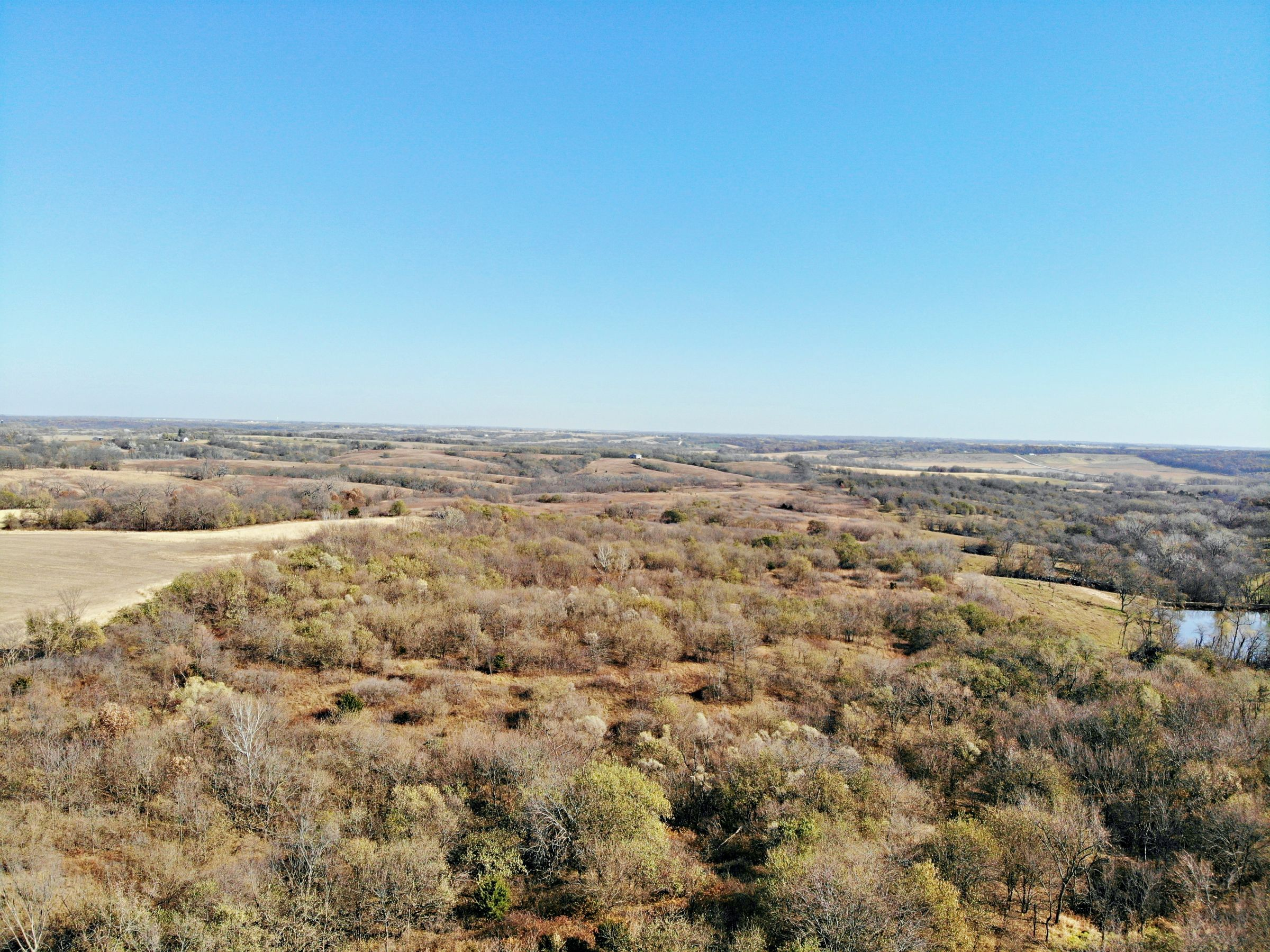 land-warren-county-iowa-63-acres-listing-number-15253-1-2020-11-10-195633.JPG