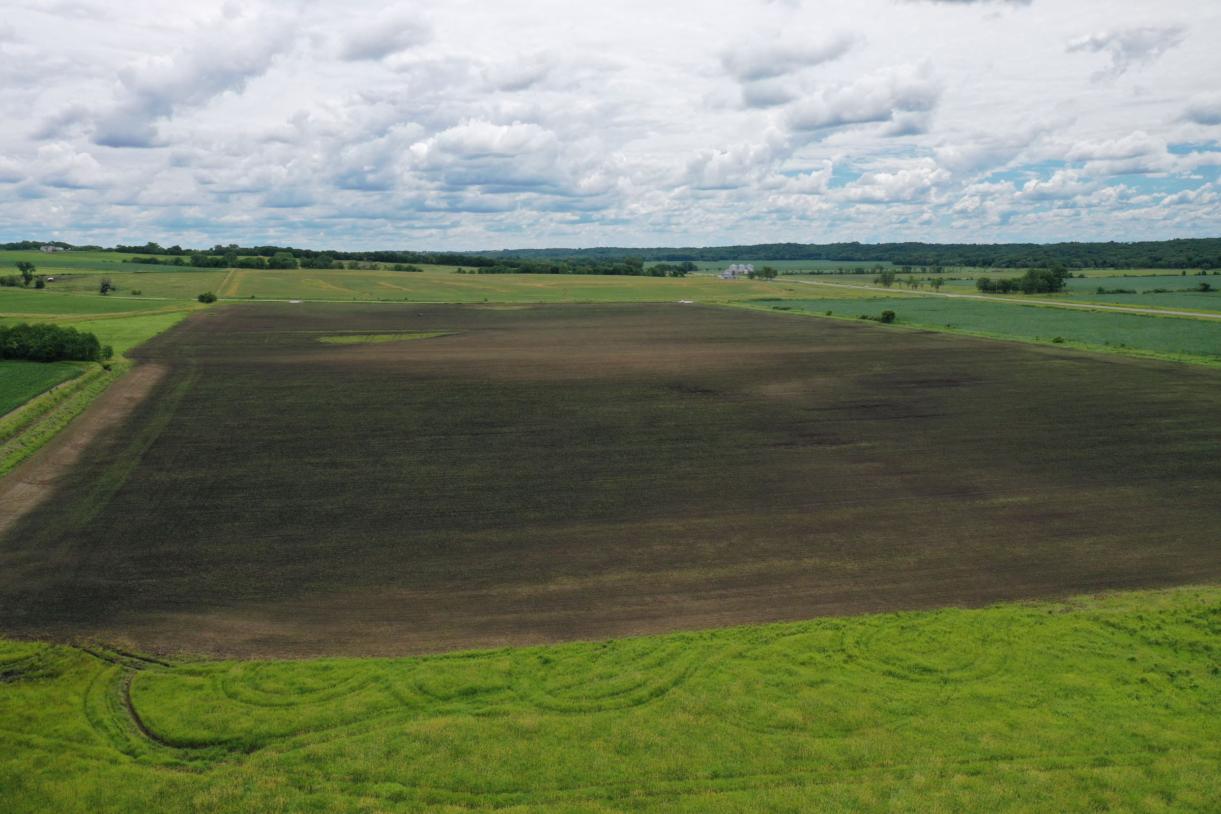 madison-county-iowa-80-acres-listing-number-15257-3-2020-11-16-205913.jpg