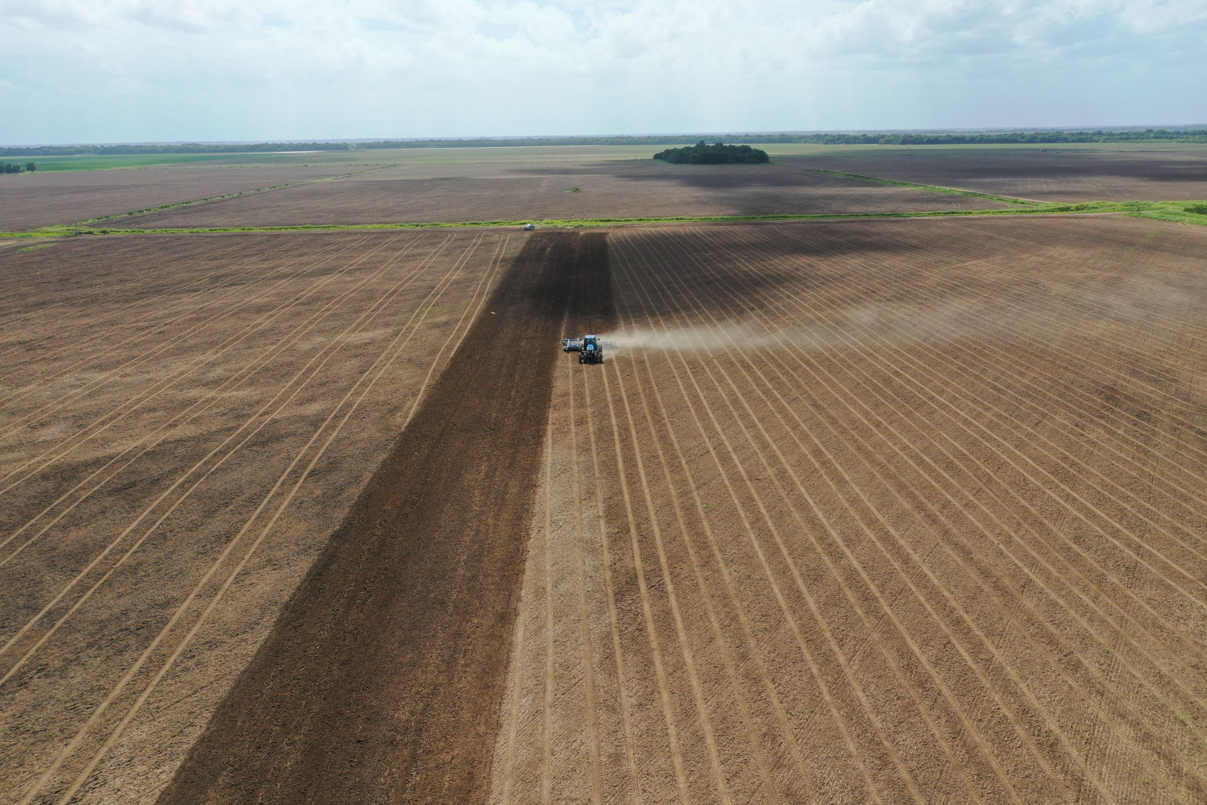 chicot-county-arkansas-1102-acres-listing-number-15259-5-2020-11-16-213038.JPG