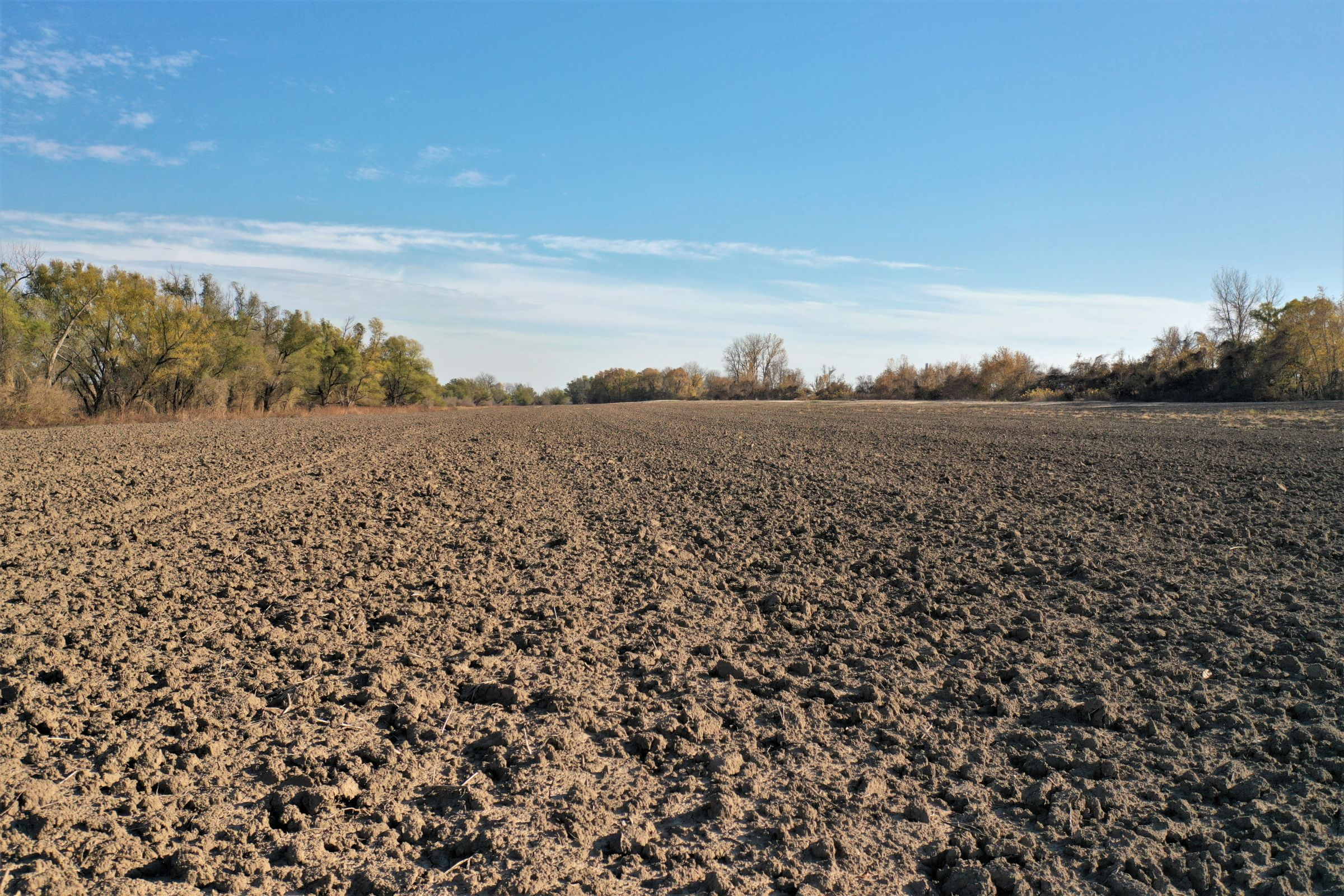 land-monroe-county-illinois-62-acres-listing-number-15265-1-2020-11-20-193043.jpg