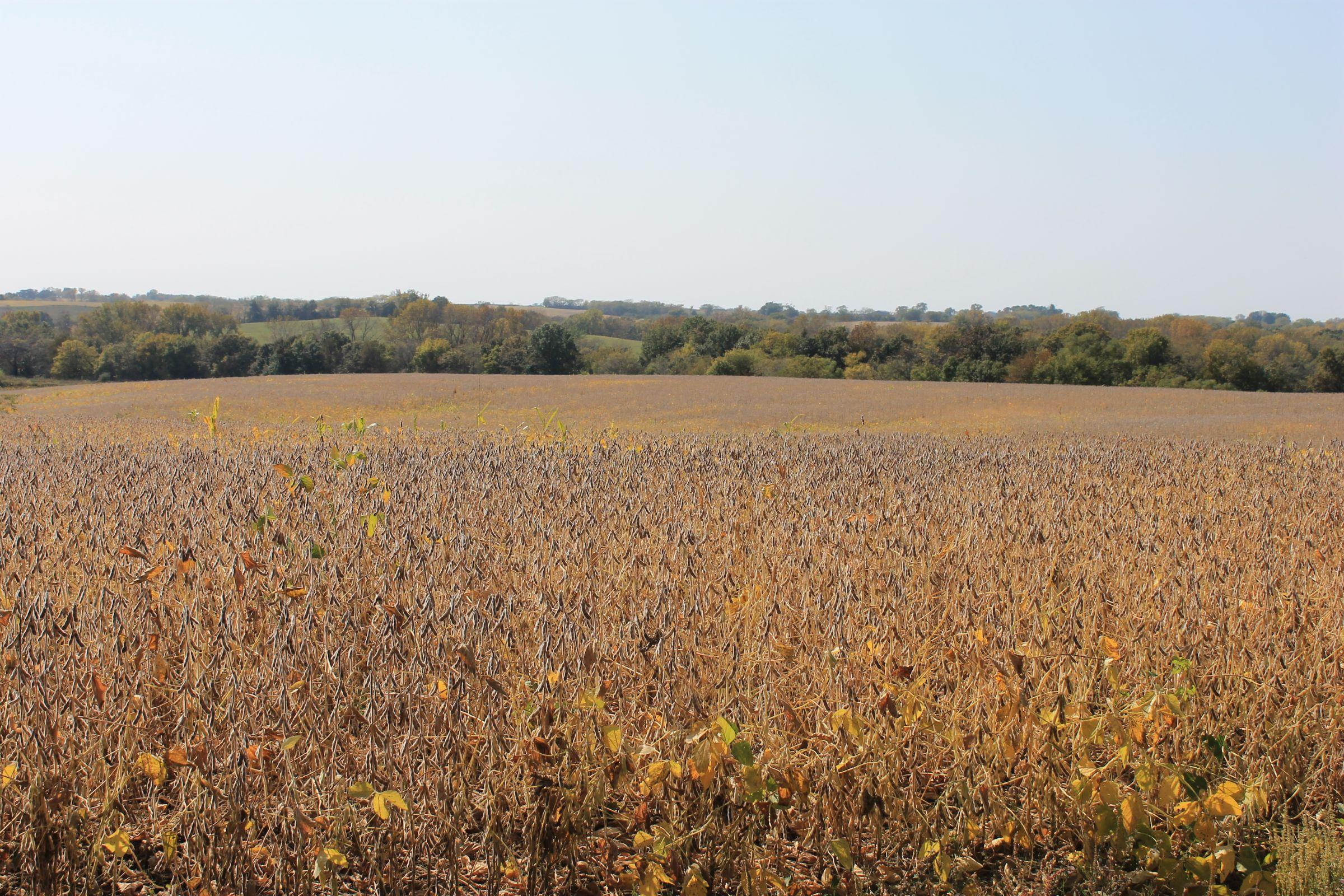 land-sullivan-county-missouri-853-acres-listing-number-15279-0-2020-12-18-135139.JPG