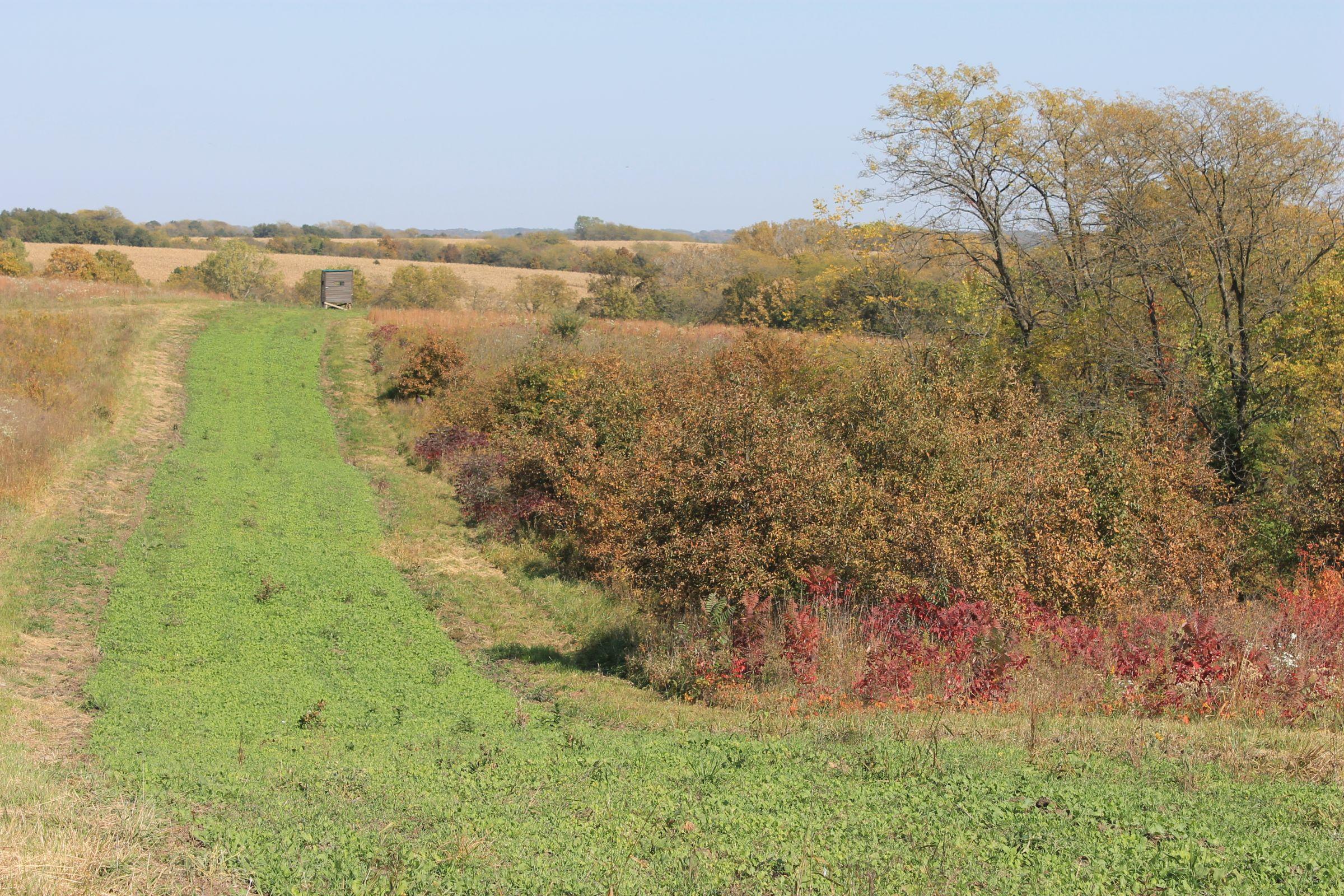 land-sullivan-county-missouri-853-acres-listing-number-15279-2-2020-12-18-135142.JPG