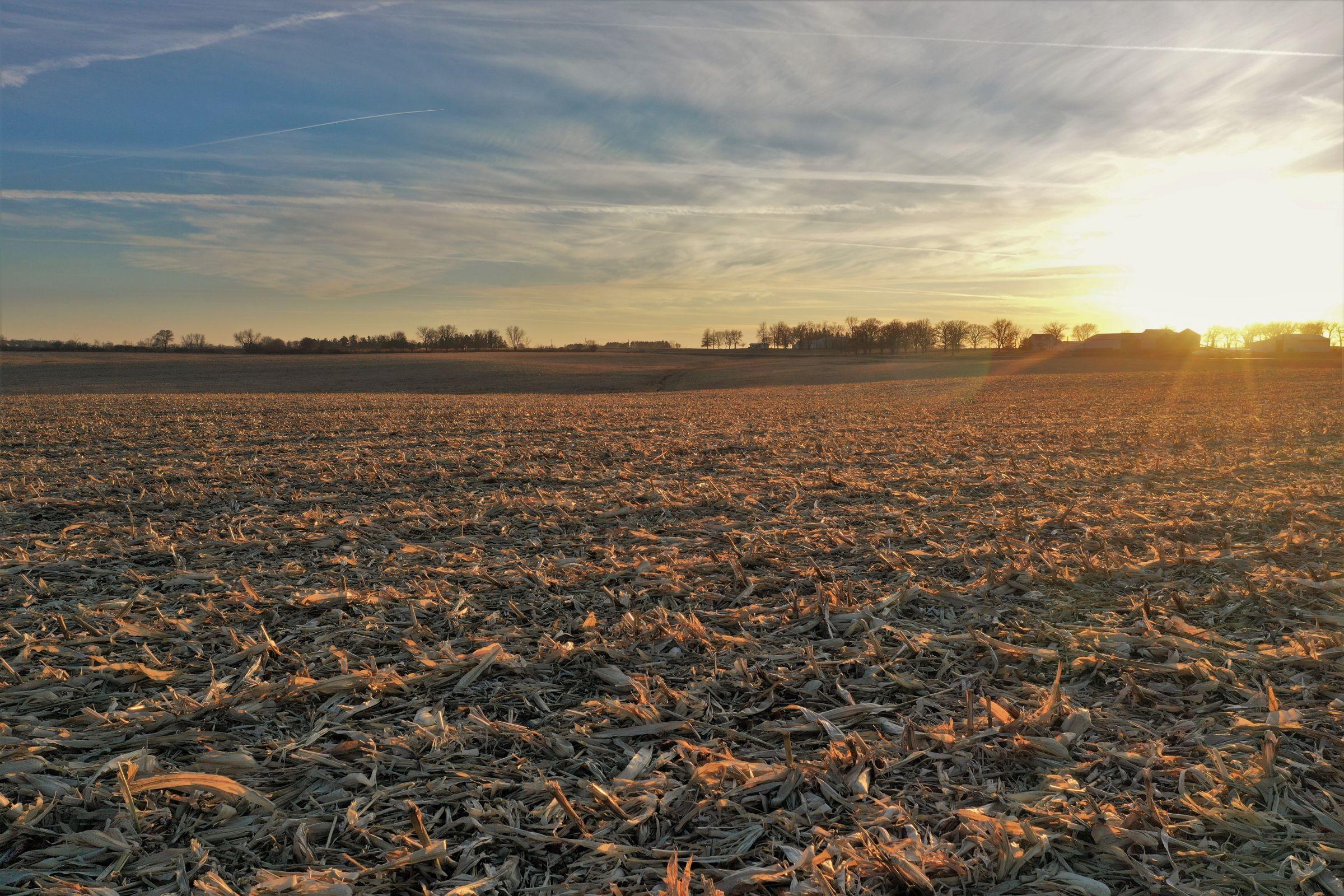 land-floyd-county-iowa-0-acres-listing-number-15282-4-2020-12-07-033014.JPG