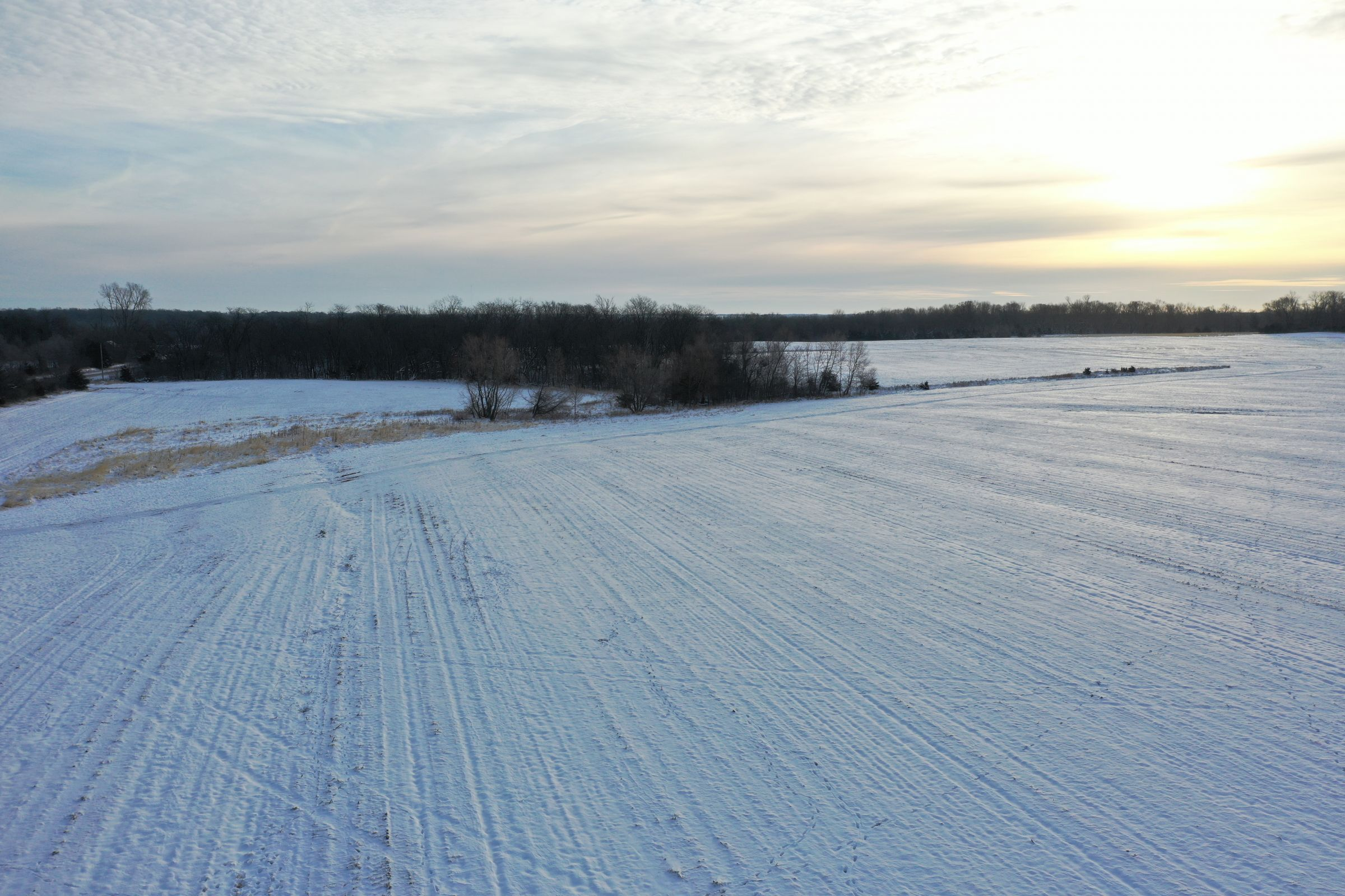 land-dallas-county-iowa-52-acres-listing-number-15297-1-2020-12-15-221807.JPG