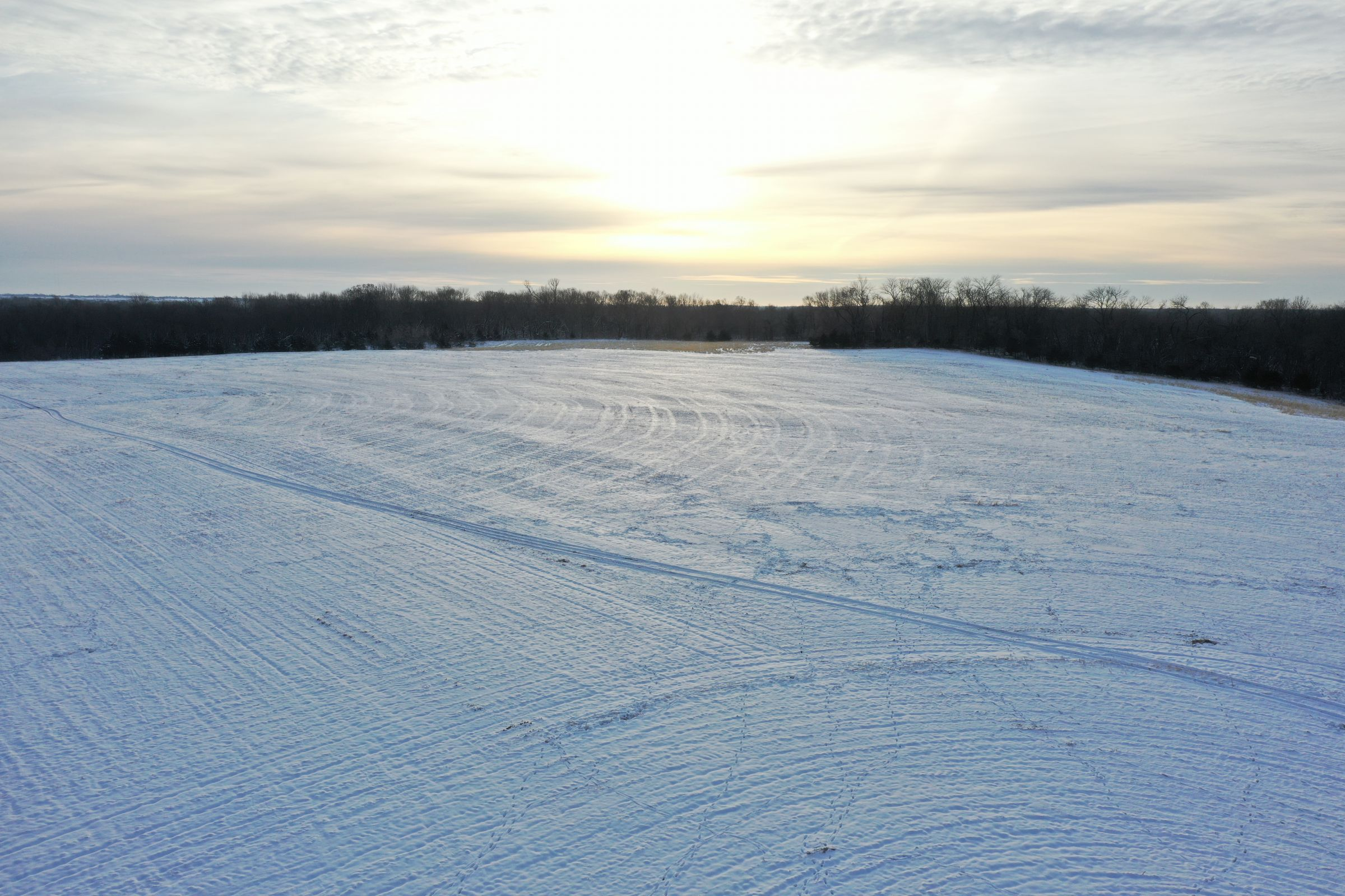 land-dallas-county-iowa-52-acres-listing-number-15297-3-2020-12-15-221810.JPG