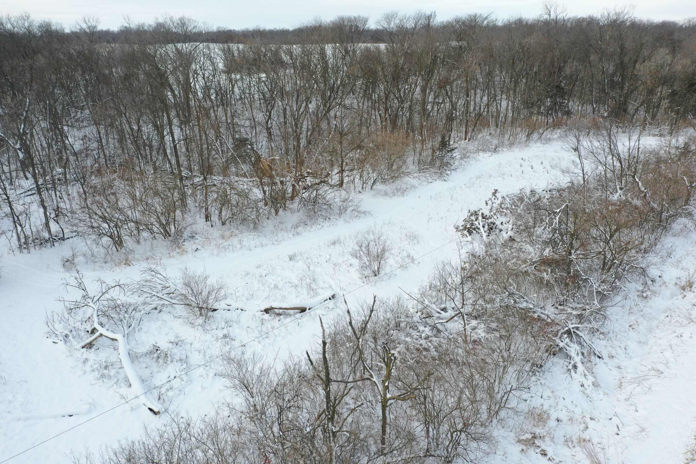 land-dallas-county-iowa-14-acres-listing-number-15298-1-2020-12-15-222742.JPG
