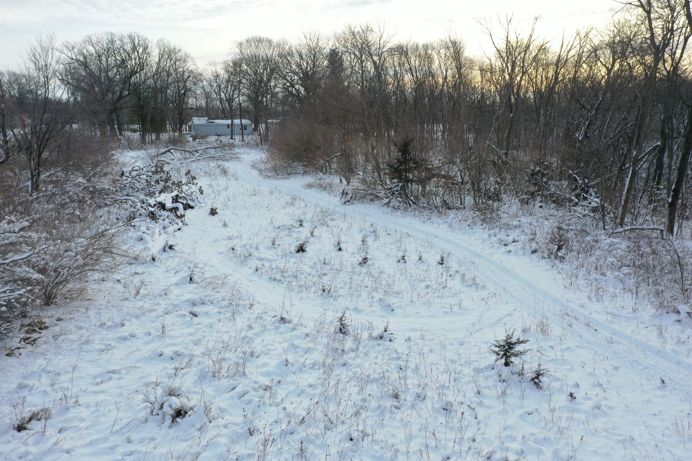 land-dallas-county-iowa-14-acres-listing-number-15298-4-2020-12-15-222617.JPG