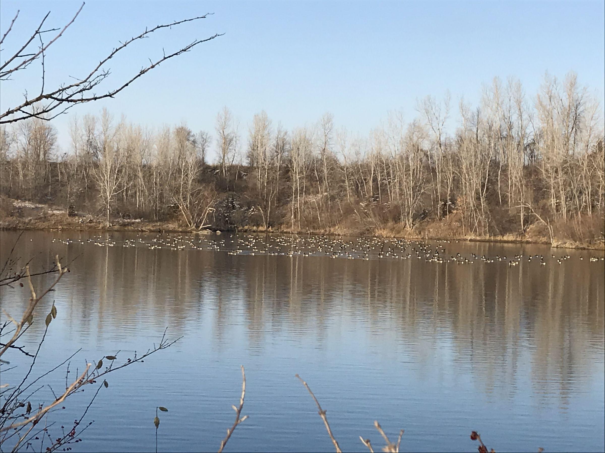 East Lake 1