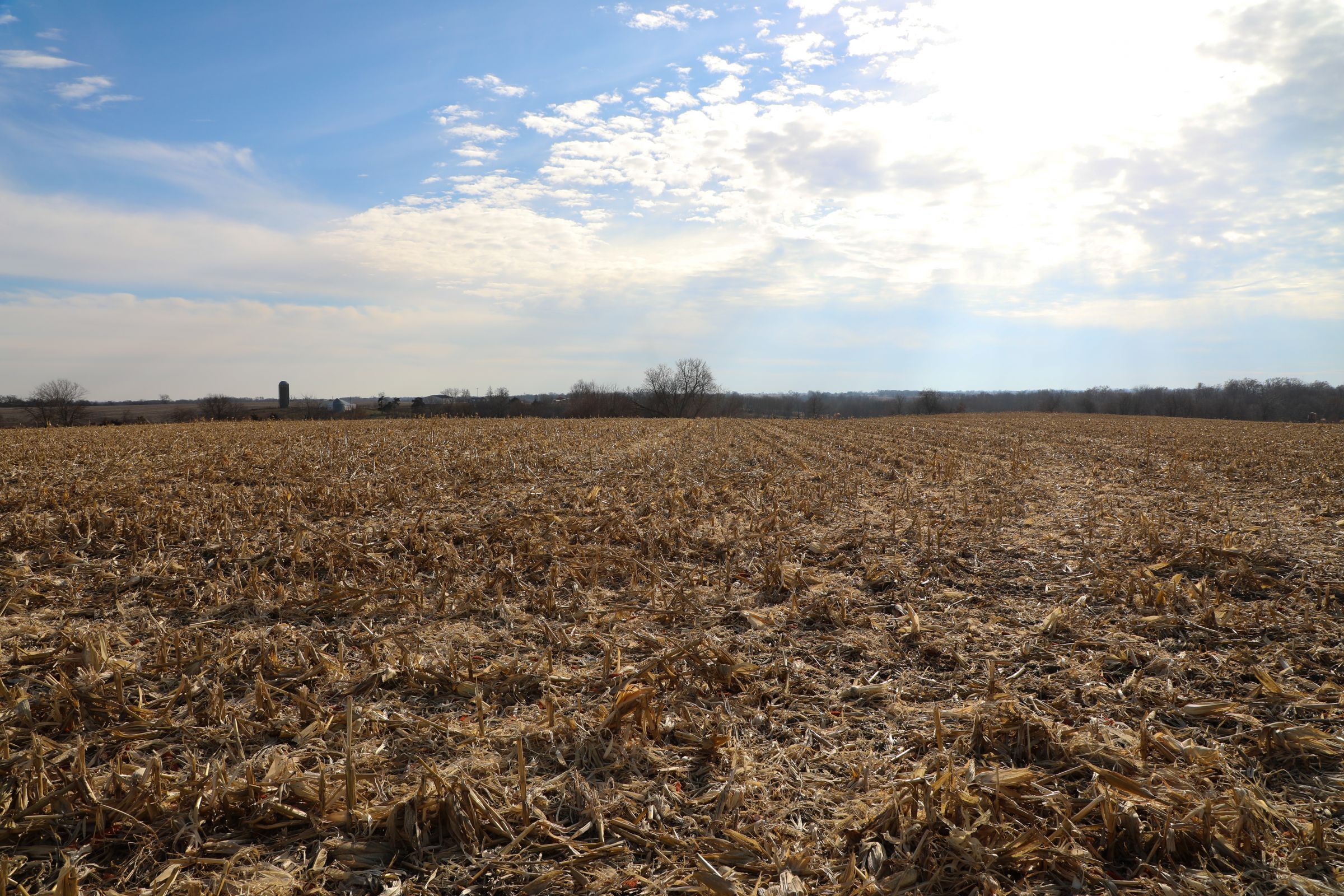 appanoose-county-iowa-37-acres-listing-number-15307-0-2020-12-24-154015.jpg