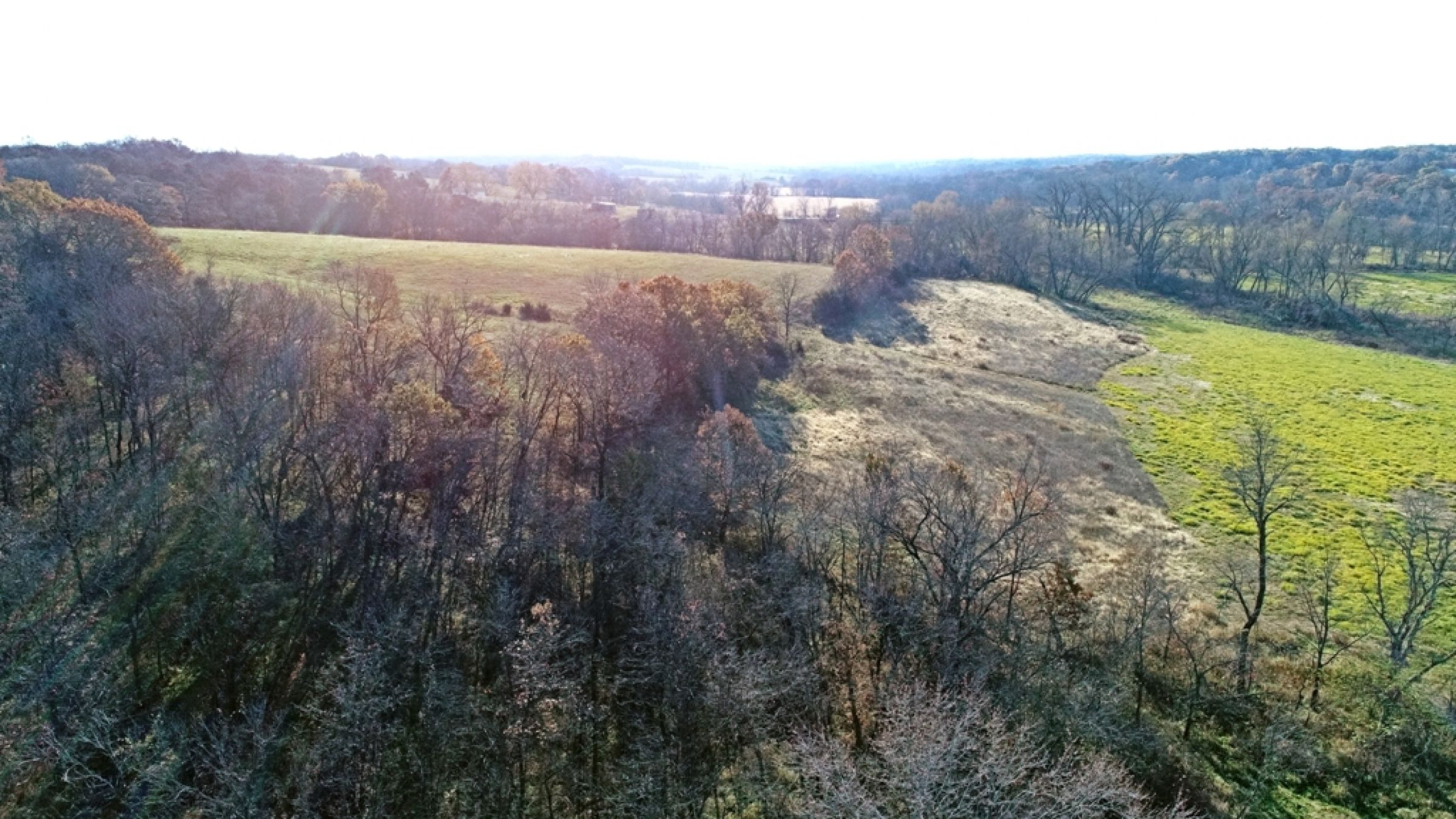 land-lucas-county-iowa-59-acres-listing-number-15316-0-2021-01-11-153831.JPG