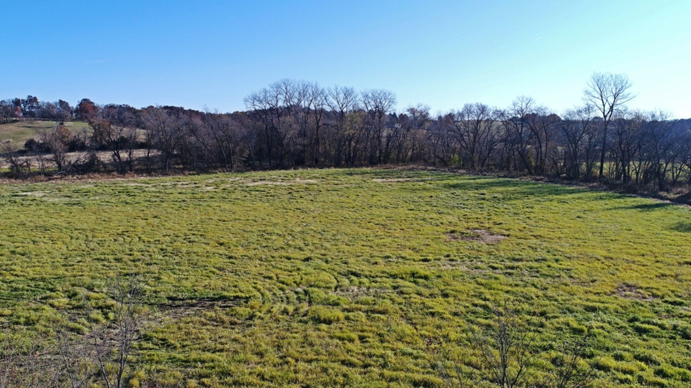 land-lucas-county-iowa-59-acres-listing-number-15316-0-2021-01-11-153850.JPG