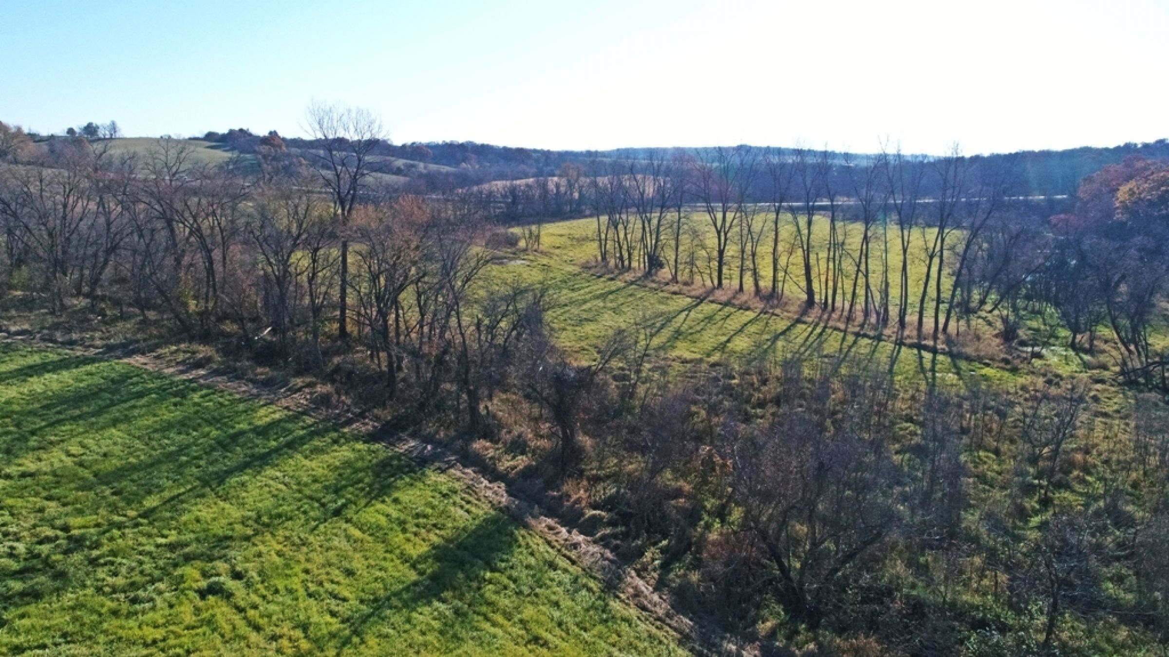 land-lucas-county-iowa-59-acres-listing-number-15316-1-2021-01-11-153942.JPG