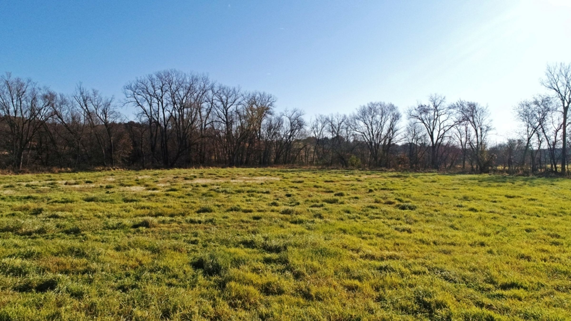 land-lucas-county-iowa-59-acres-listing-number-15316-1-2021-01-11-154033.JPG