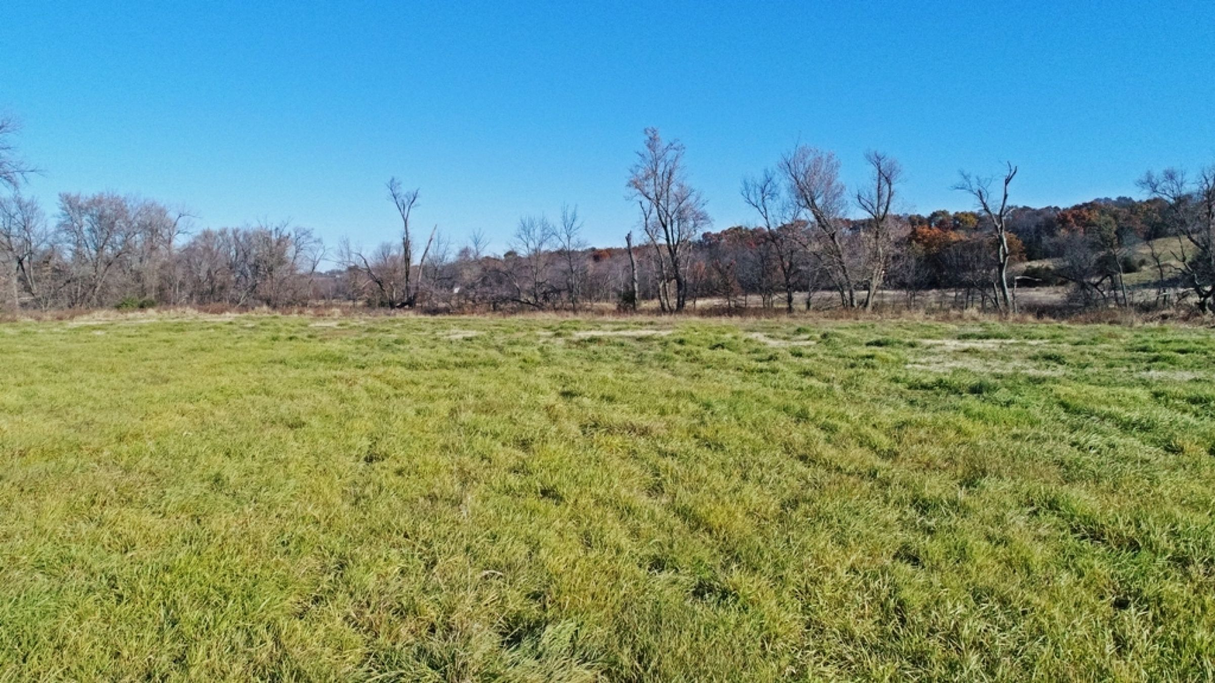 land-lucas-county-iowa-59-acres-listing-number-15316-2-2021-01-11-154034.JPG
