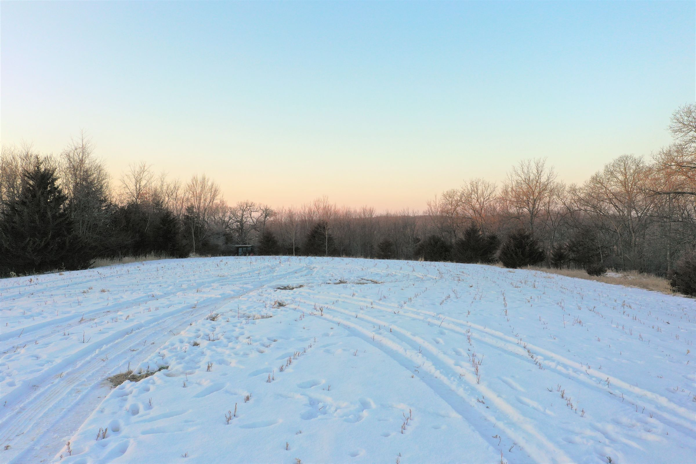 land-madison-county-iowa-25-acres-listing-number-15317-2-2021-01-11-204921.JPG