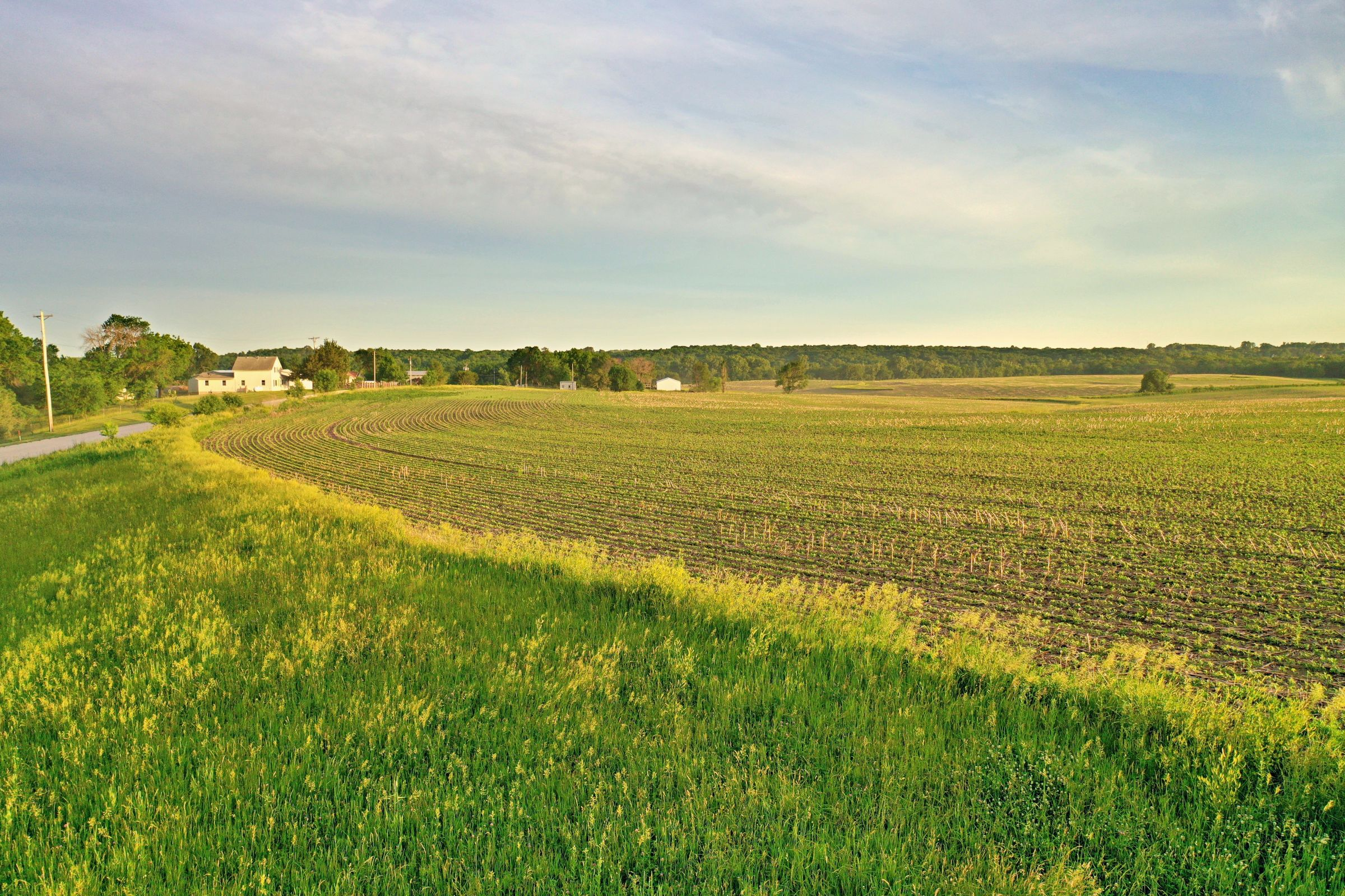 land-warren-county-iowa-80-acres-listing-number-15328-4-2021-01-25-192211.JPG