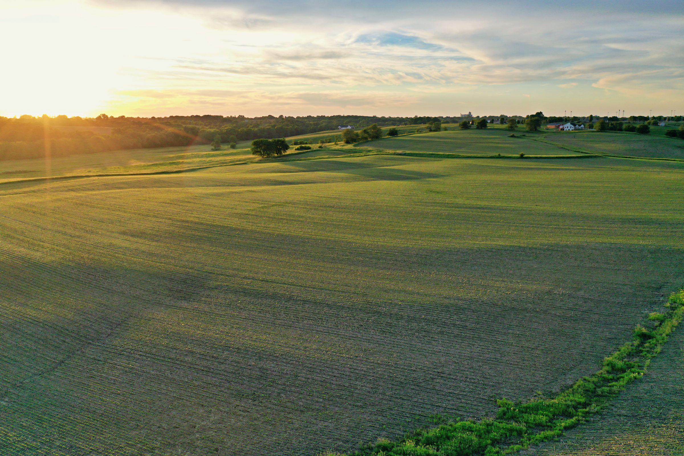 land-warren-county-iowa-80-acres-listing-number-15328-4-2021-01-25-192459.JPG