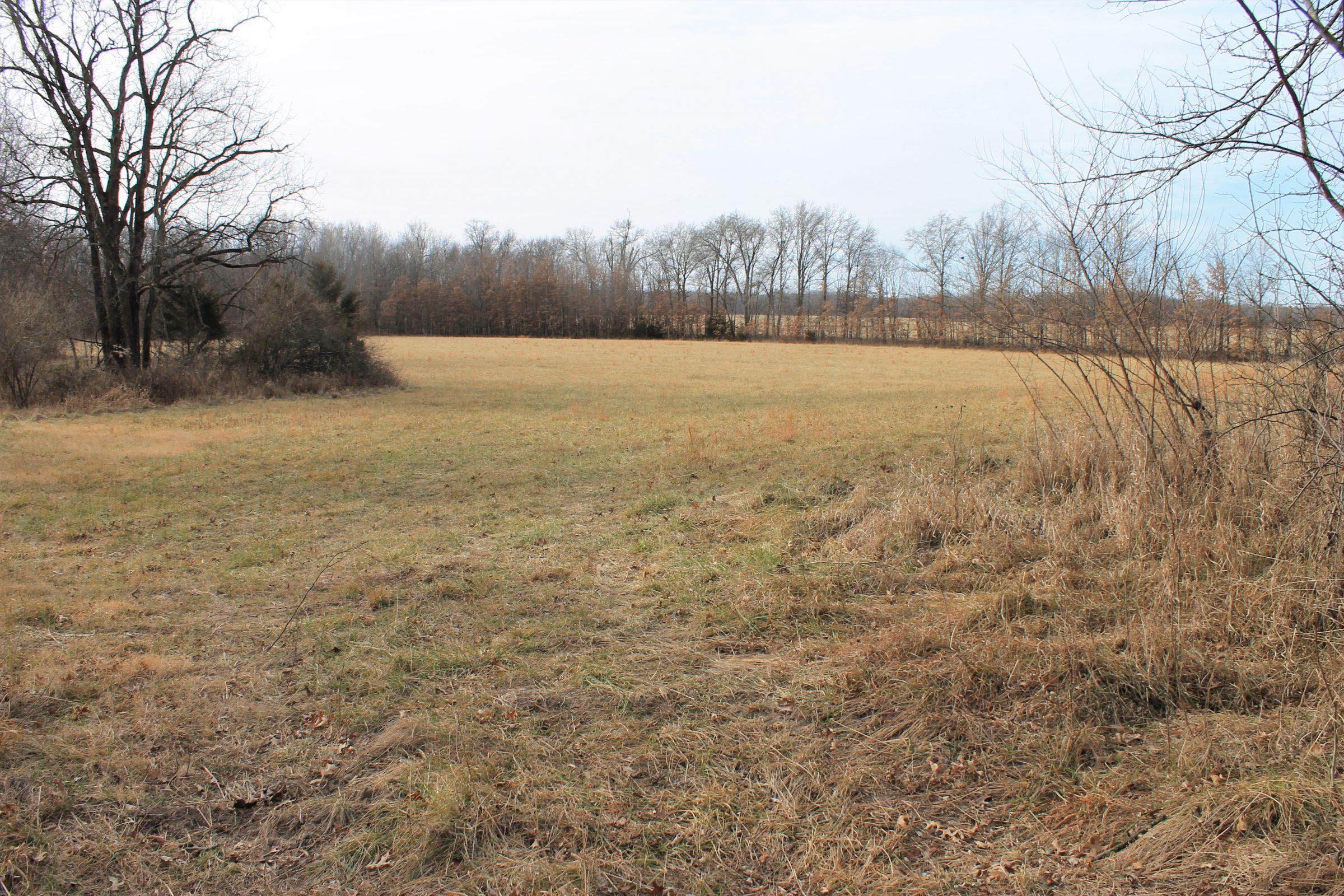 land-knox-county-missouri-239-acres-listing-number-15346-3-2021-02-05-144705.jpg