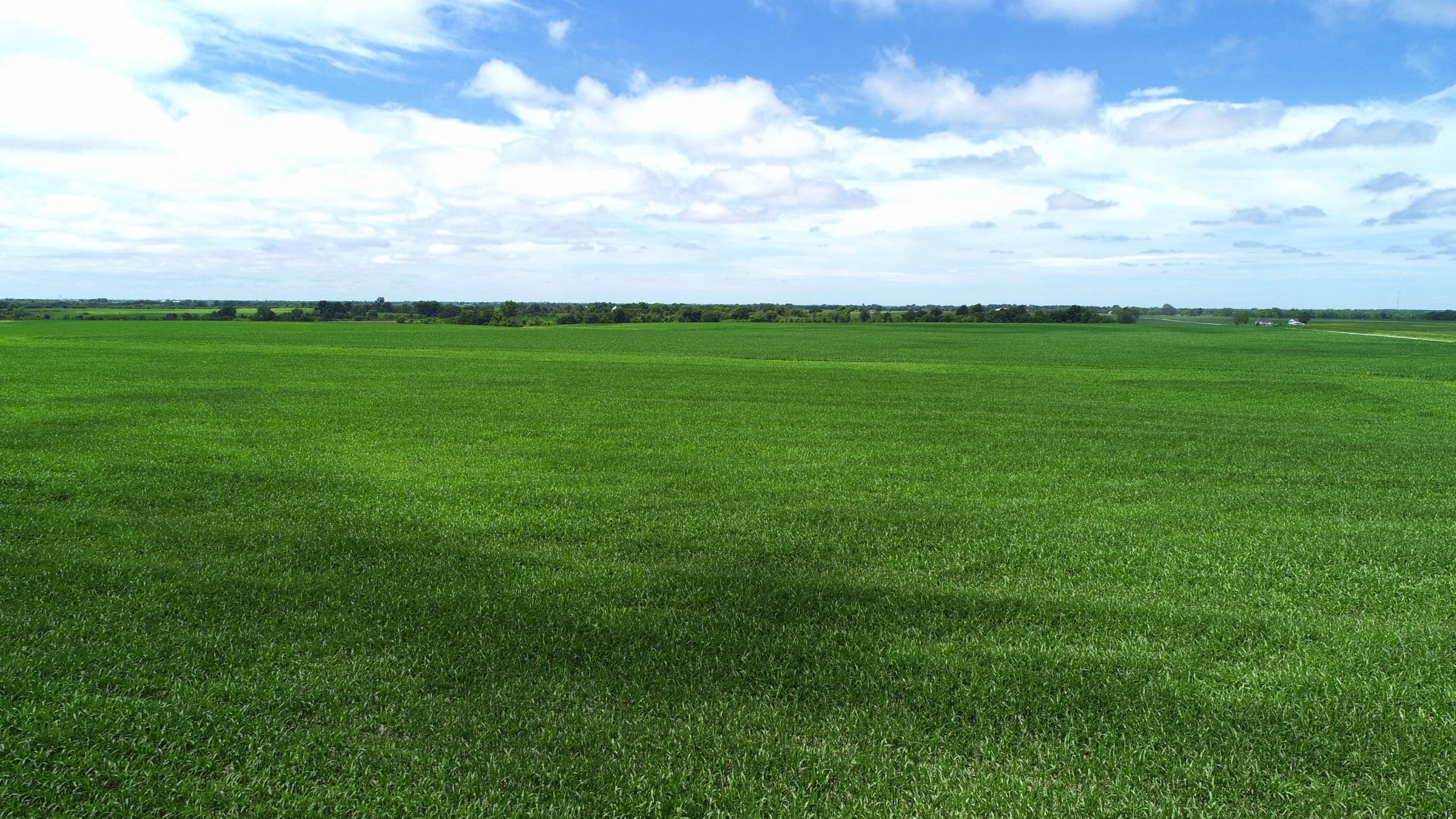 land-davis-county-iowa-1042-acres-listing-number-15349-2-2021-02-03-212237.jpg